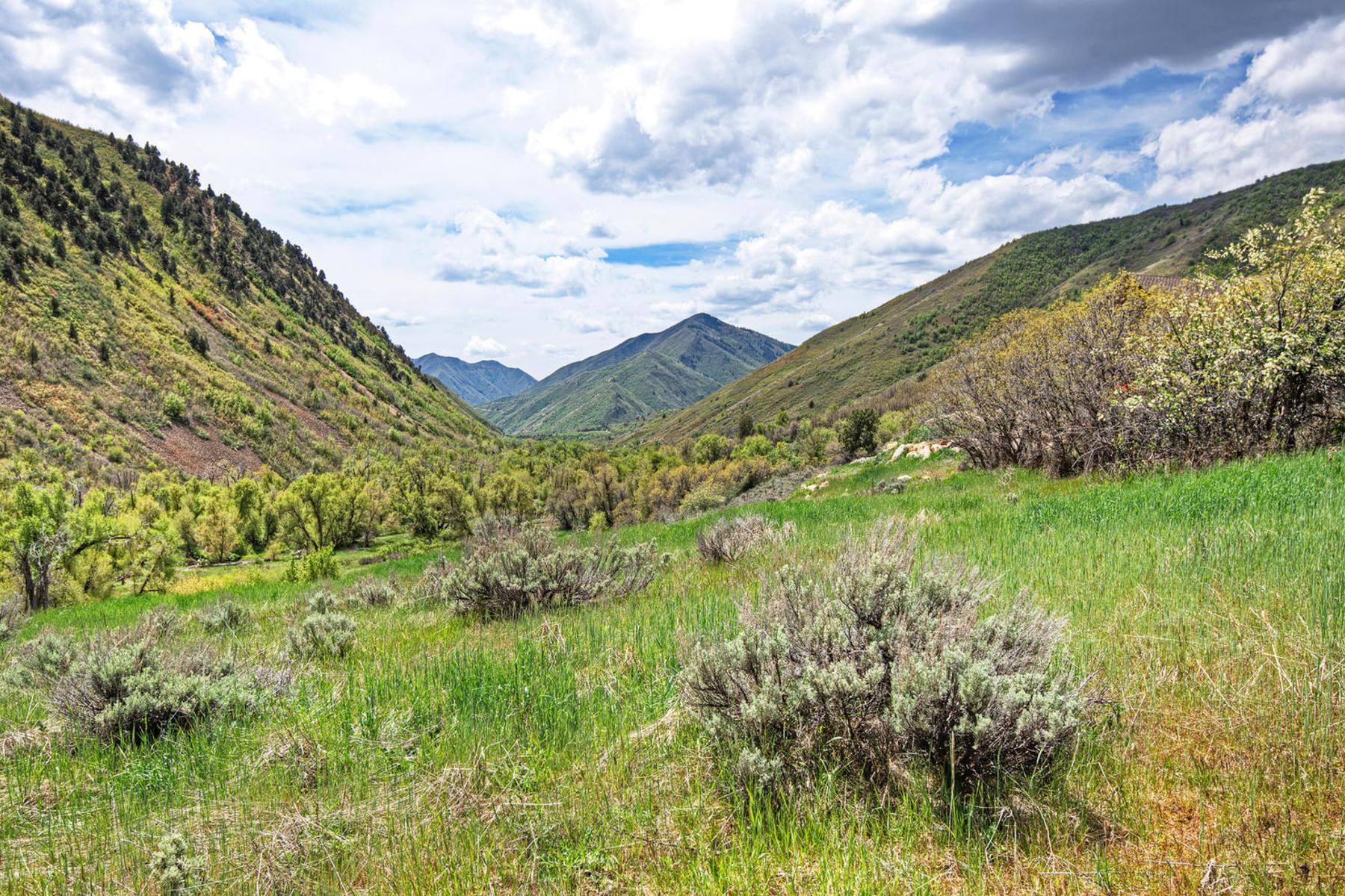 Terreno por un Venta en Cottages at Hobble Creek 7426 E Meadow Dr Lot 2 Springville, Utah, 84663 Estados Unidos