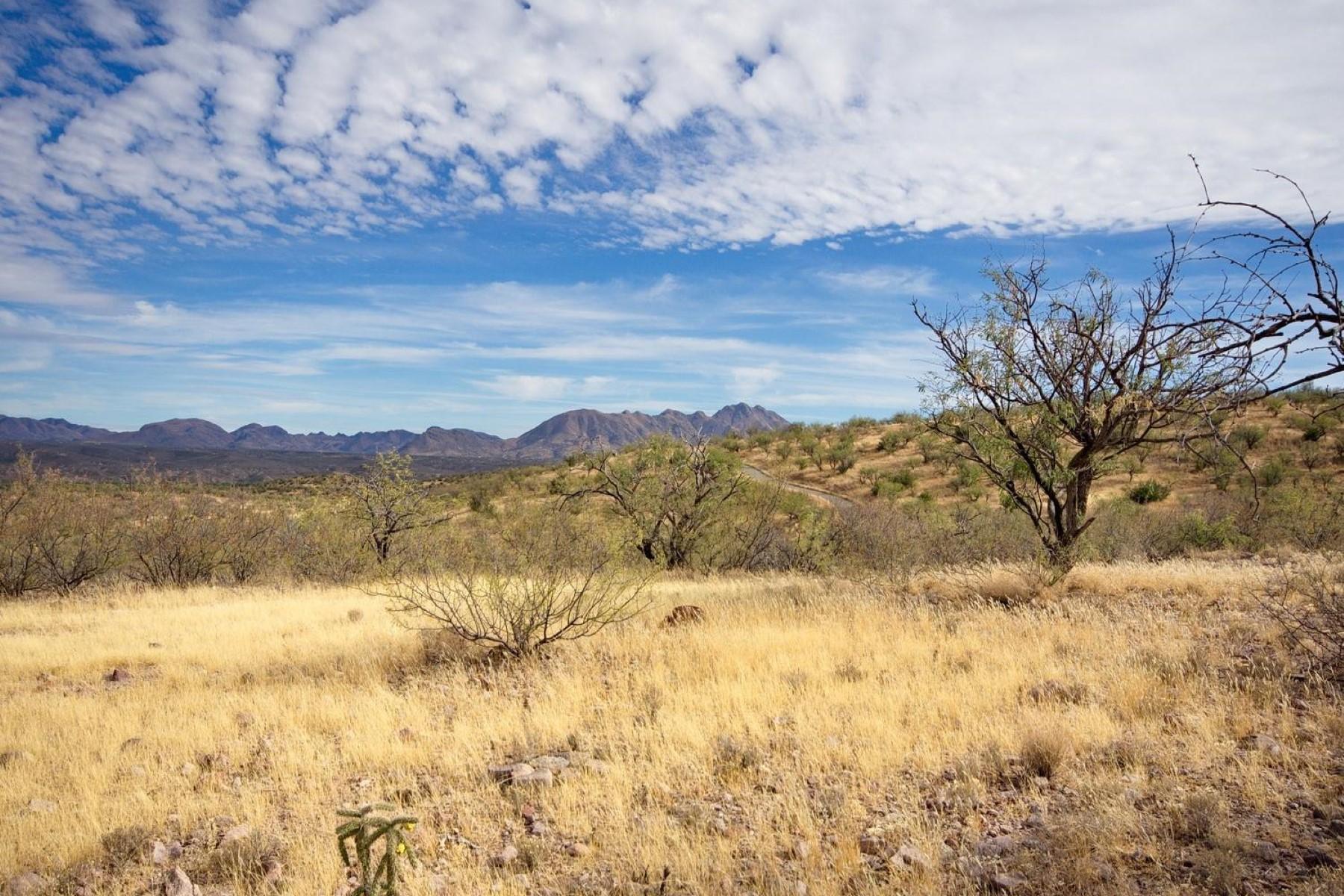 Land for Sale at 4.16 acre horse property Parcel 1 Vista De Torres Tubac, Arizona, 85646 United States