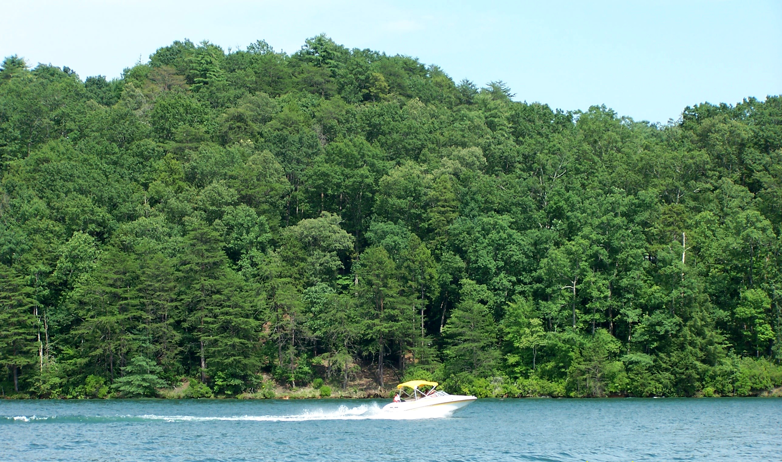 Land for Sale at Deep Water Access Plus Mountain Views W88 The Cliffs At Keowee Vineyards, Sunset, South Carolina, 29685 United States