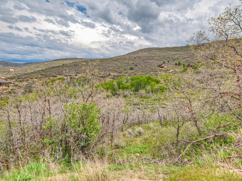 Terrain pour l Vente à Views of the Timpanogos—Build your dream home on 1.1 acres 2363 Westview Dr Lot 1352 Heber City, Utah 84032 États-Unis