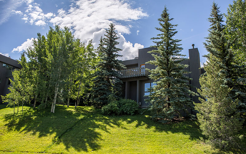 Condominio per Vendita alle ore Meadow Ranch 202 Meadow Ranch Drive Snowmass Village, Colorado 81615 Stati Uniti