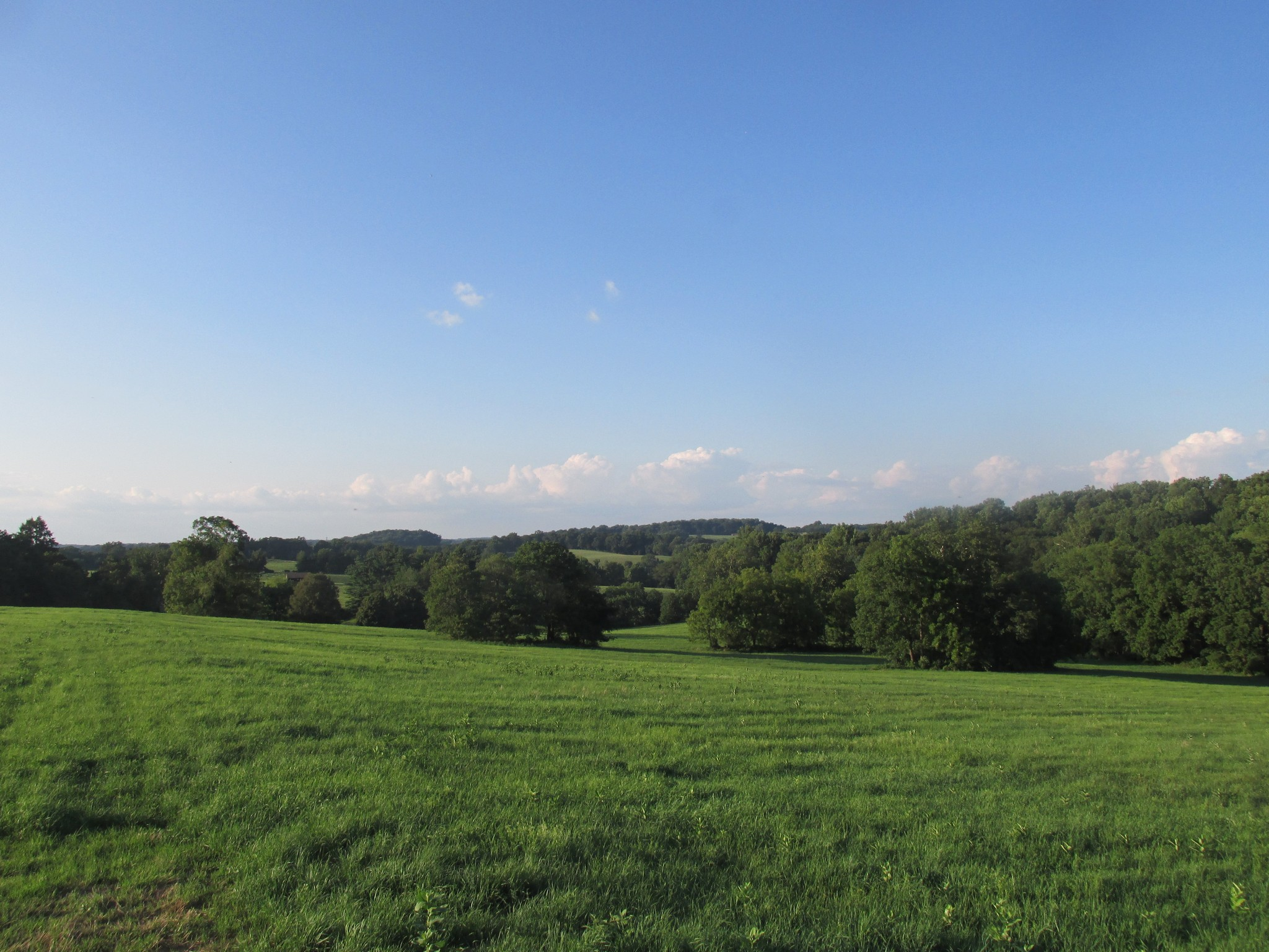 sales property at Cheshire Hunt Country