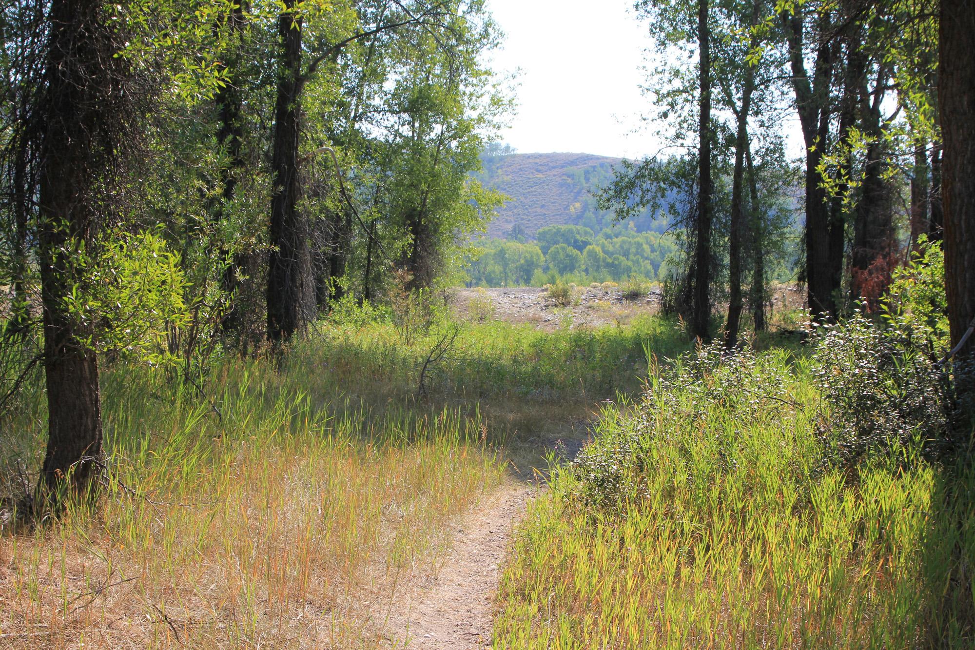 Terrain pour l Vente à Premier Riverfront lot in Wilderness 3145 W Wilderness Lane Wilson, Wyoming 83014 États-Unis