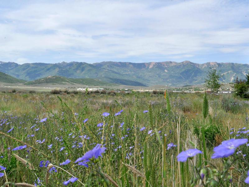 Terreno per Vendita alle ore Great Views of Deer Valley & Park City Mountain Resort from this Bison Buffs lot 2190 Saddlehorn Dr Lot 49 Park City, Utah 84098 Stati Uniti