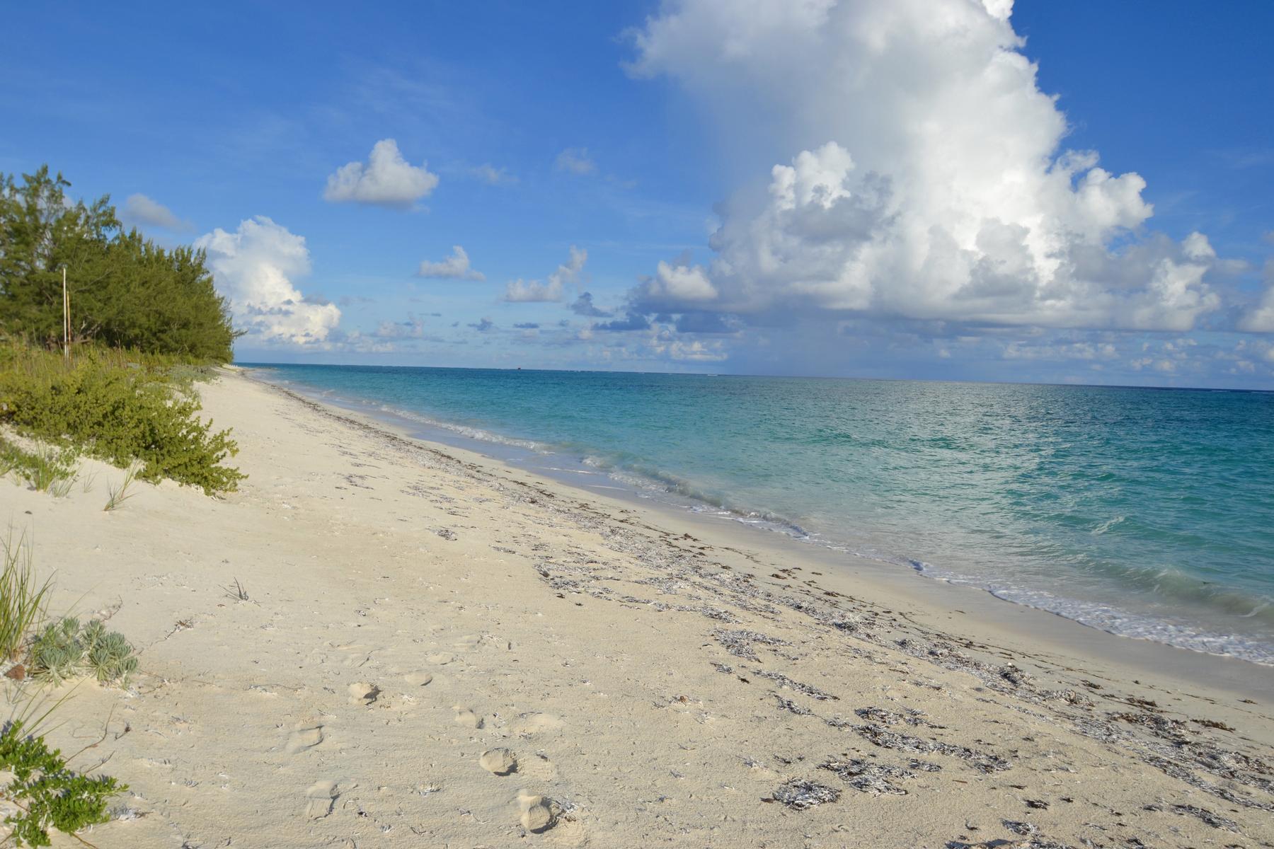 Additional photo for property listing at North Caicos Land Oceanview 惠特比, 北凯科斯 TCI 特克斯和凯科斯群岛