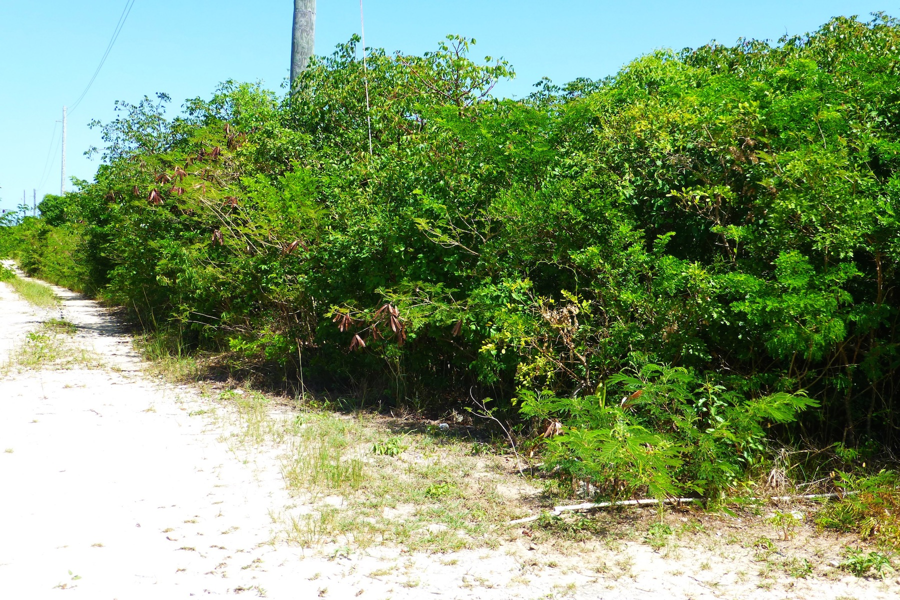 Land for Sale at EIS Lot 2 Block 51-F Gregory Town, Eleuthera Bahamas
