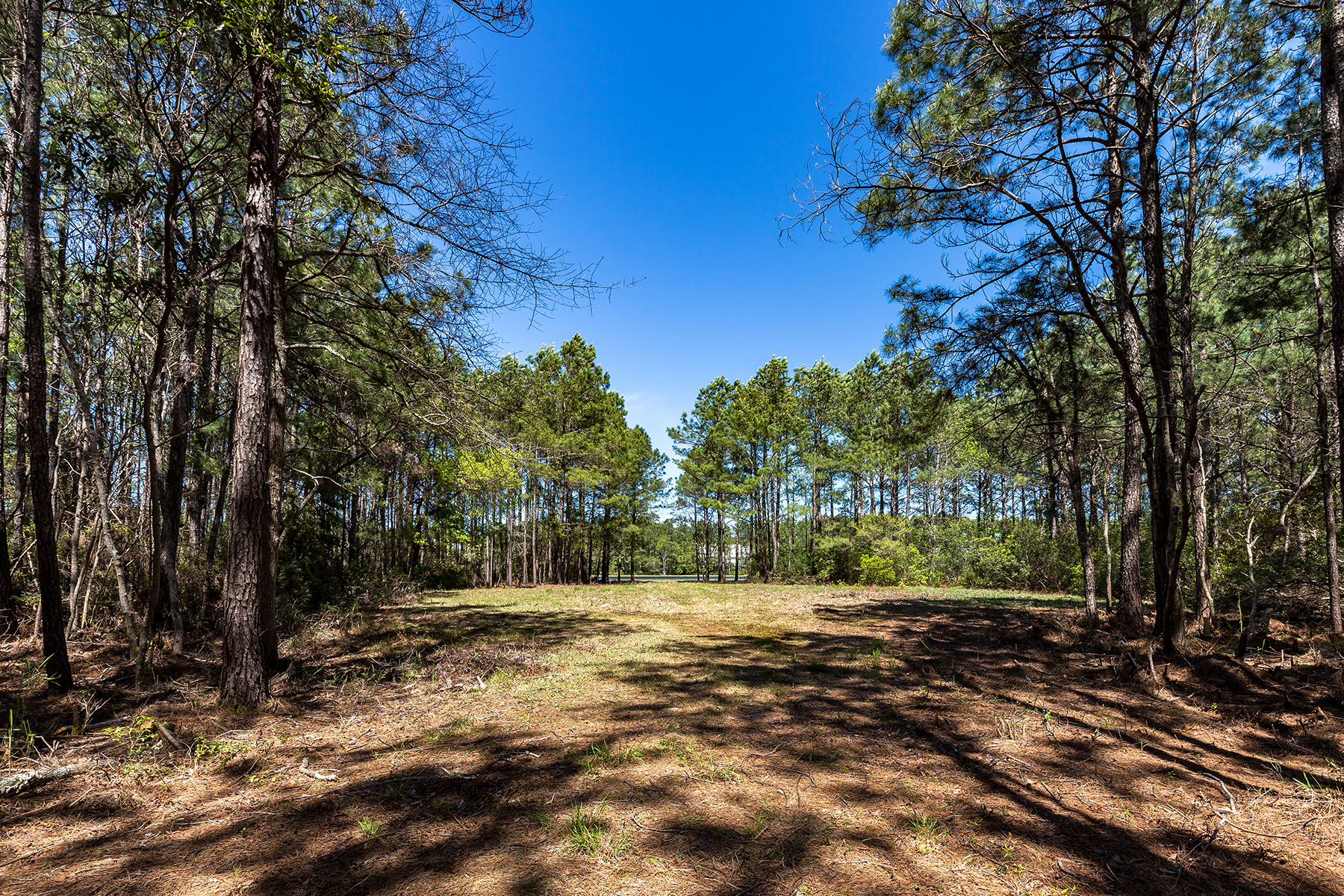 Terreno per Vendita alle ore Lot 107 Prince George Ocean Lot 107 Vanderbilt Blvd Pawleys Island, Carolina Del Sud, 29585 Stati Uniti