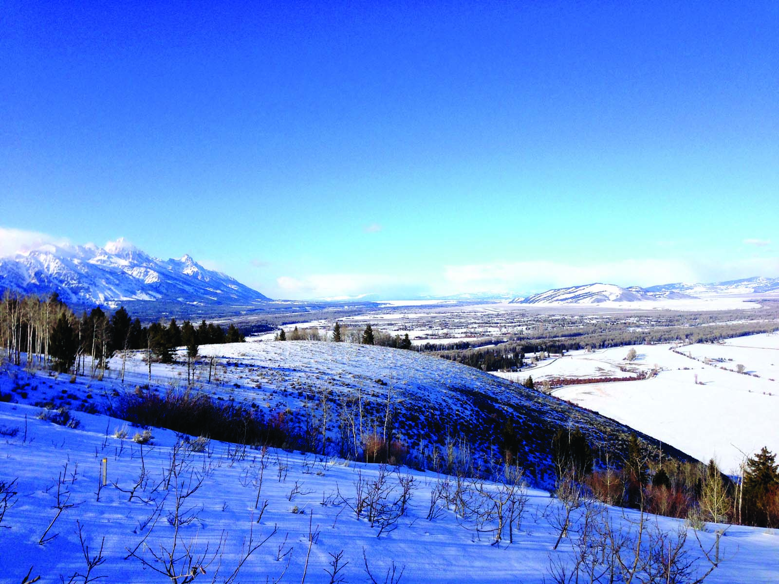 Terrain pour l Vente à Exceptional Grand Teton View 1210 West Bar BC Ranch Rd Jackson, Wyoming 83001 États-Unis
