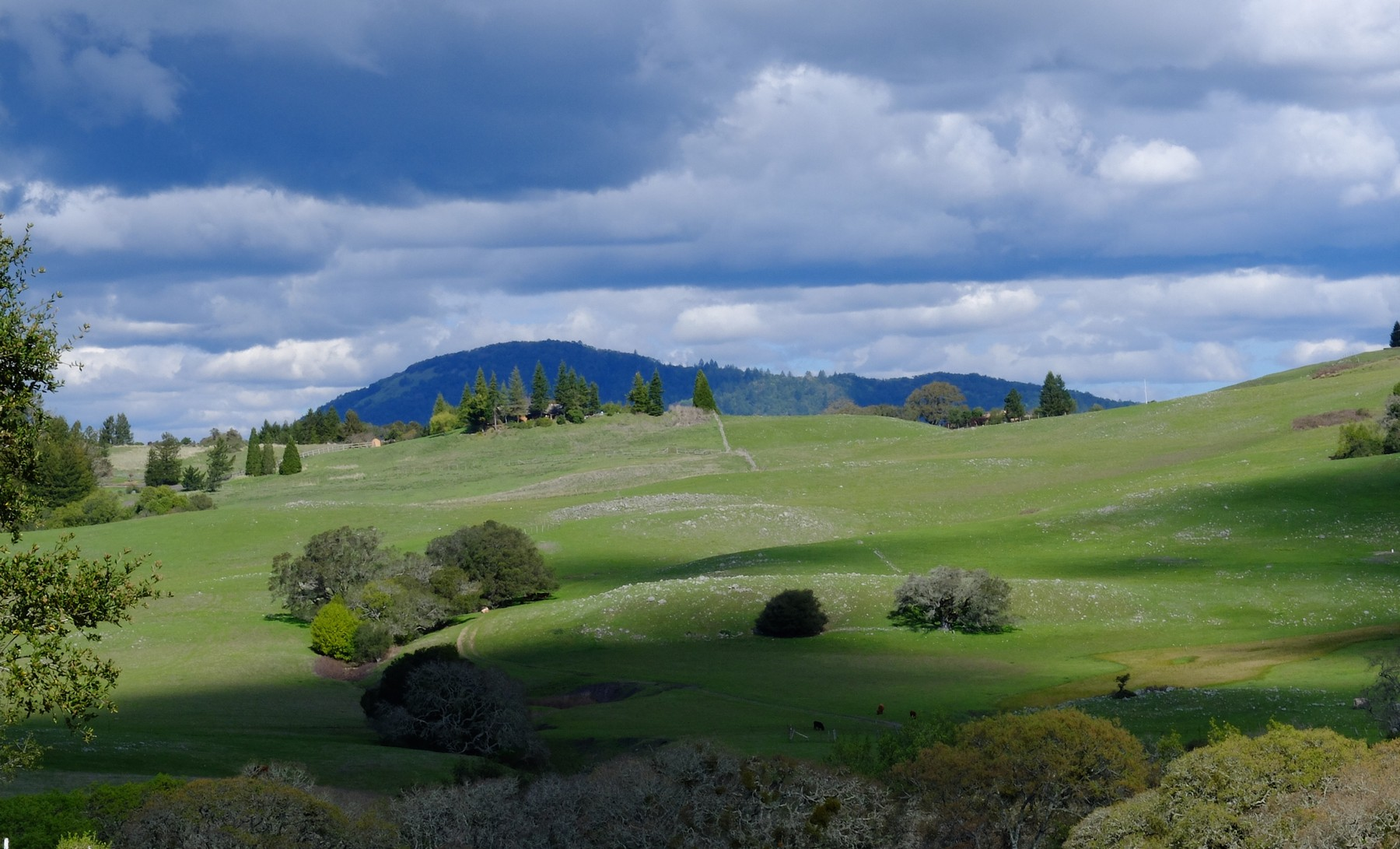 Property For Sale at Stunning Sonoma Mountain Ranch Site