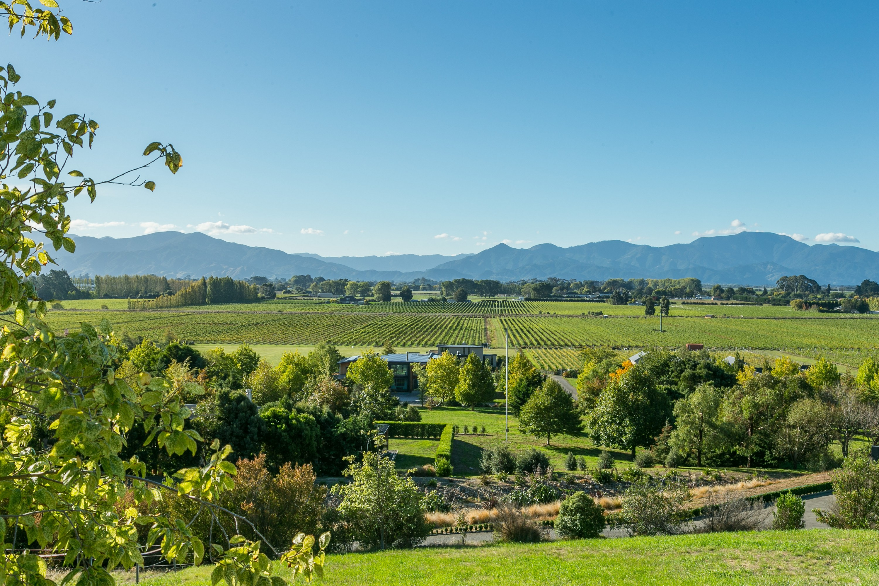 Land for Sale at Lot 33, Dry Hills Lane, Marlborough Lot 33 Dry Hills Lane Blenheim, Marlborough, 7274 New Zealand