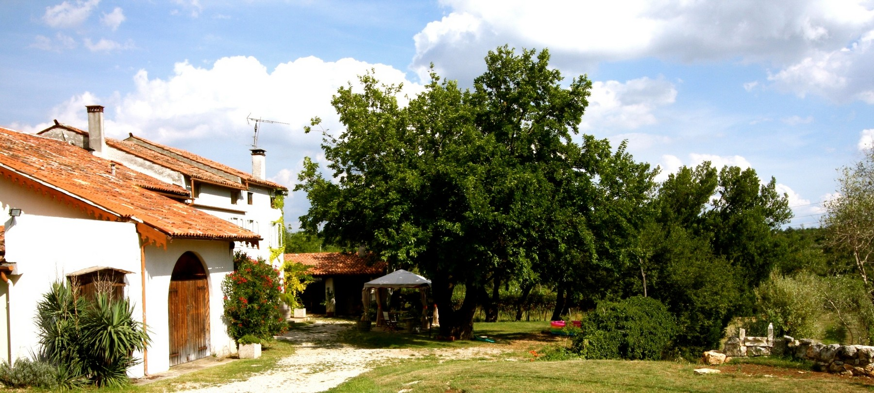 Additional photo for property listing at Own your own Italian organic winery Via Cavallo San Germano Dei Berici, Vicenza 36040 Italy