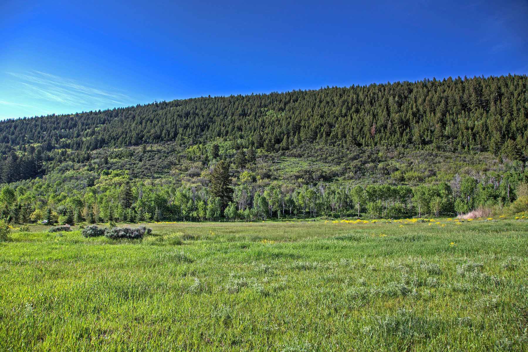 Terreno por un Venta en Over 5 Acres, Quarry Mountain Ranch Homesite 3983 Quarry Mountain Rd Park City, Utah, 84098 Estados Unidos