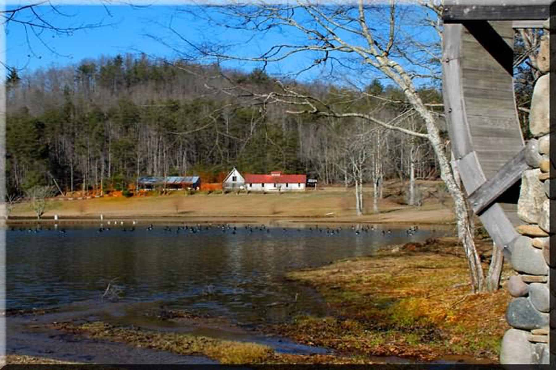 Additional photo for property listing at Find unbound joy at Canaan Valley Farm! 734 Canaan Valley Road Suches, Geórgia 30572 Estados Unidos