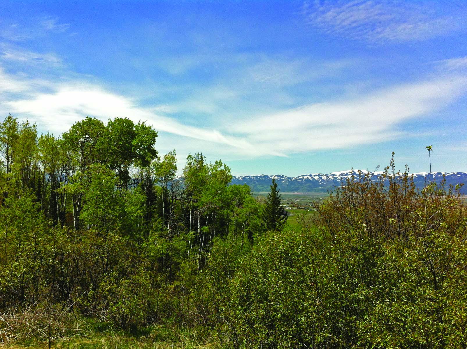 Property For Sale at Sorensen Creek Lot