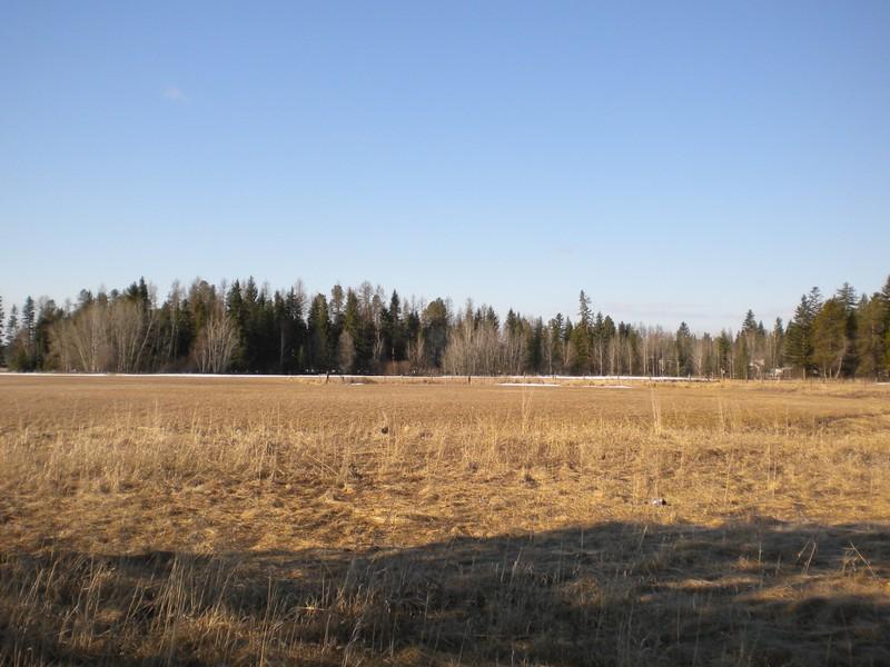 土地 のために 売買 アット Beautiful Views 1180 Voerman Road Whitefish, モンタナ 59937 アメリカ合衆国