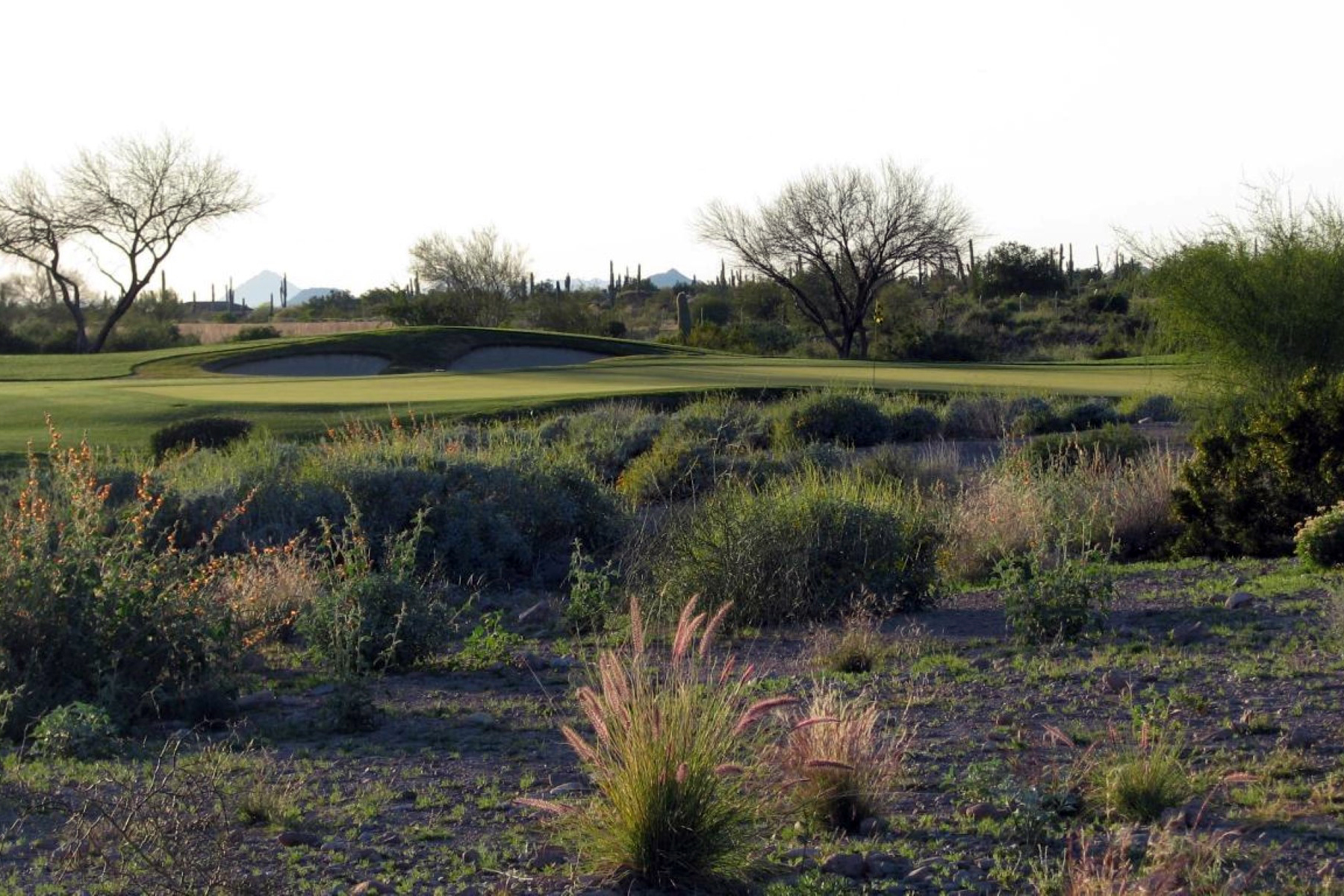 Terreno por un Venta en .64 Acres Lot In The Private Gated Luxury Golf Community Of Superstition Mounta 2866 S Petroglyph Trail #64 Gold Canyon, Arizona, 85118 Estados Unidos