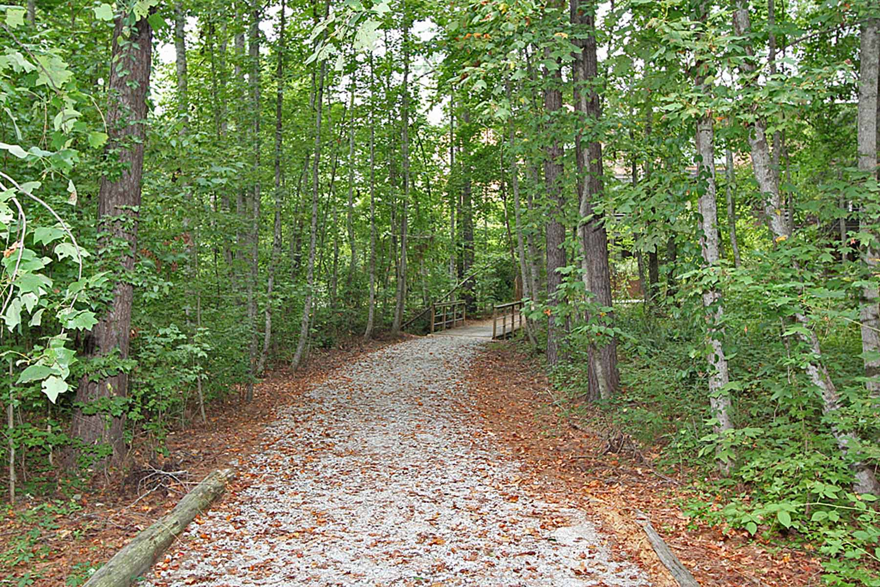 Mark för Försäljning vid Wooded Lot in Serenbe Community 10703 Serenbe Lane Lot 159 Chattahoochee Hills, Georgien 30268 Usa