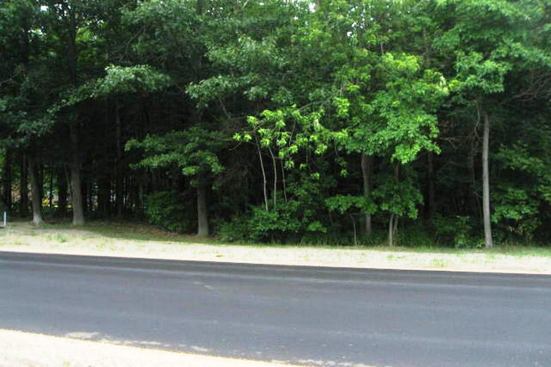 土地 为 销售 在 0 N 168th 0 N 168th Street 霍德兰, 密歇根州, 49424 美国