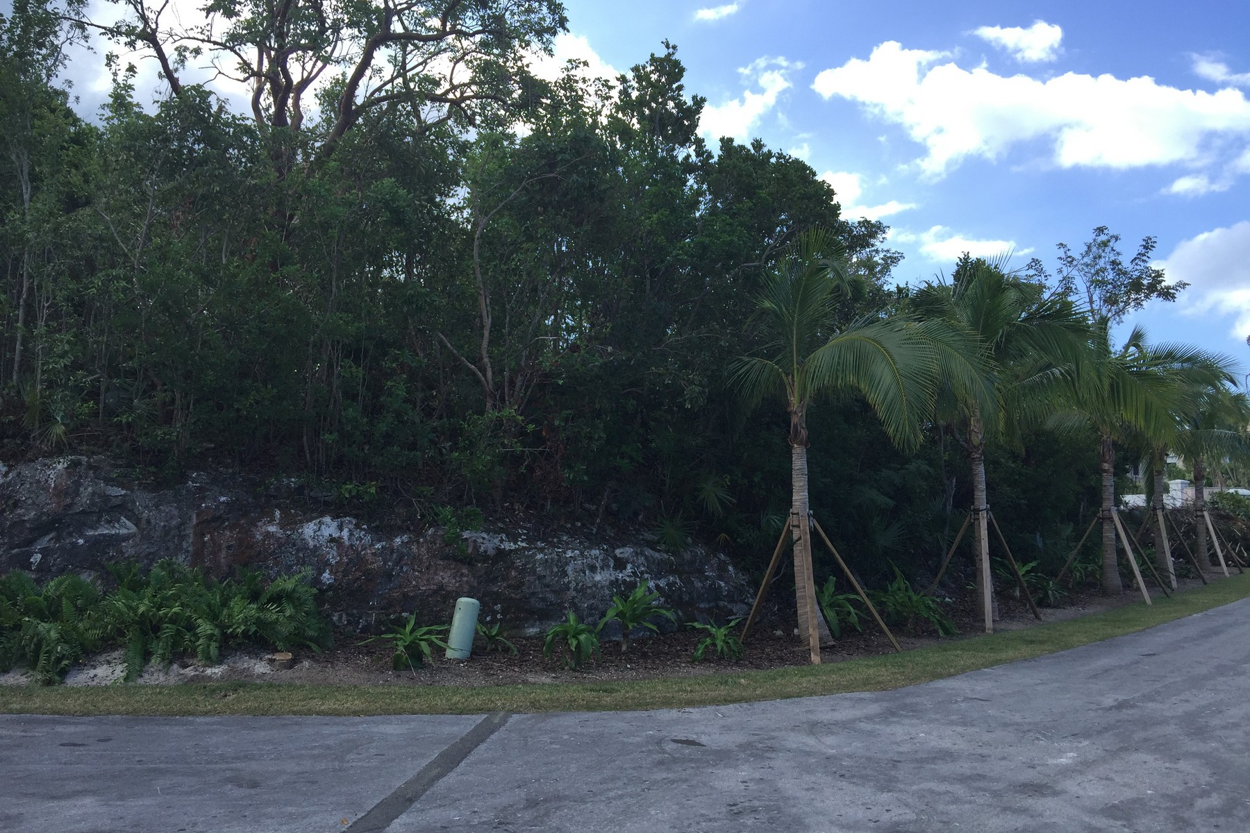 Additional photo for property listing at Elevated Lyford Cay Lot Lyford Cay, New Providence/Nassau Bahamas