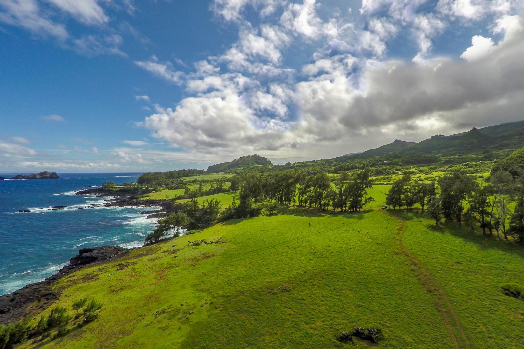Arazi için Satış at 81 Acre Oceanfront Hana, Maui Hana Highway, Sea Ranch Hana, Hawaii, 96713 Amerika Birleşik Devletleri