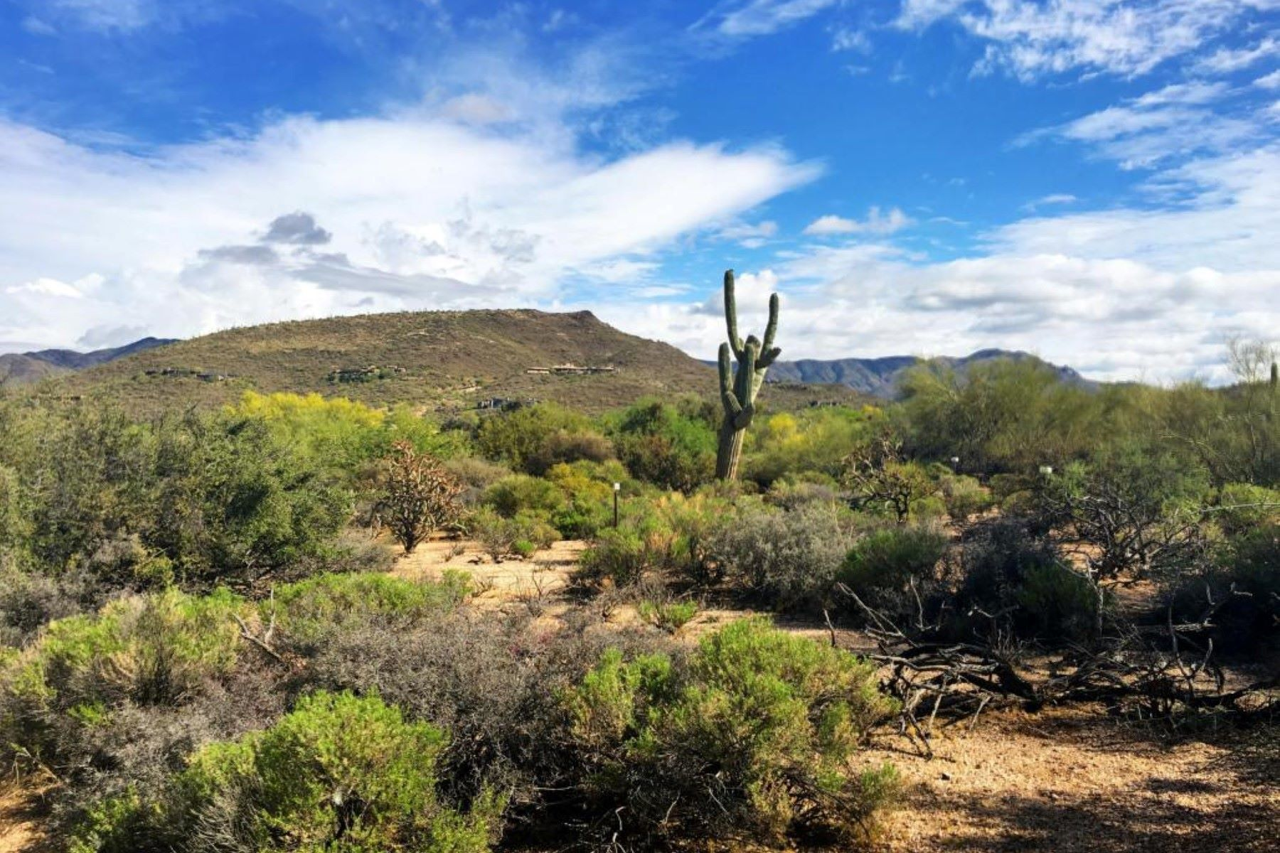 Terreno por un Venta en Homesite in Desert Mountain's Village of Gambel Quail 9396 E Sundance Trl #77 Scottsdale, Arizona, 85262 Estados Unidos