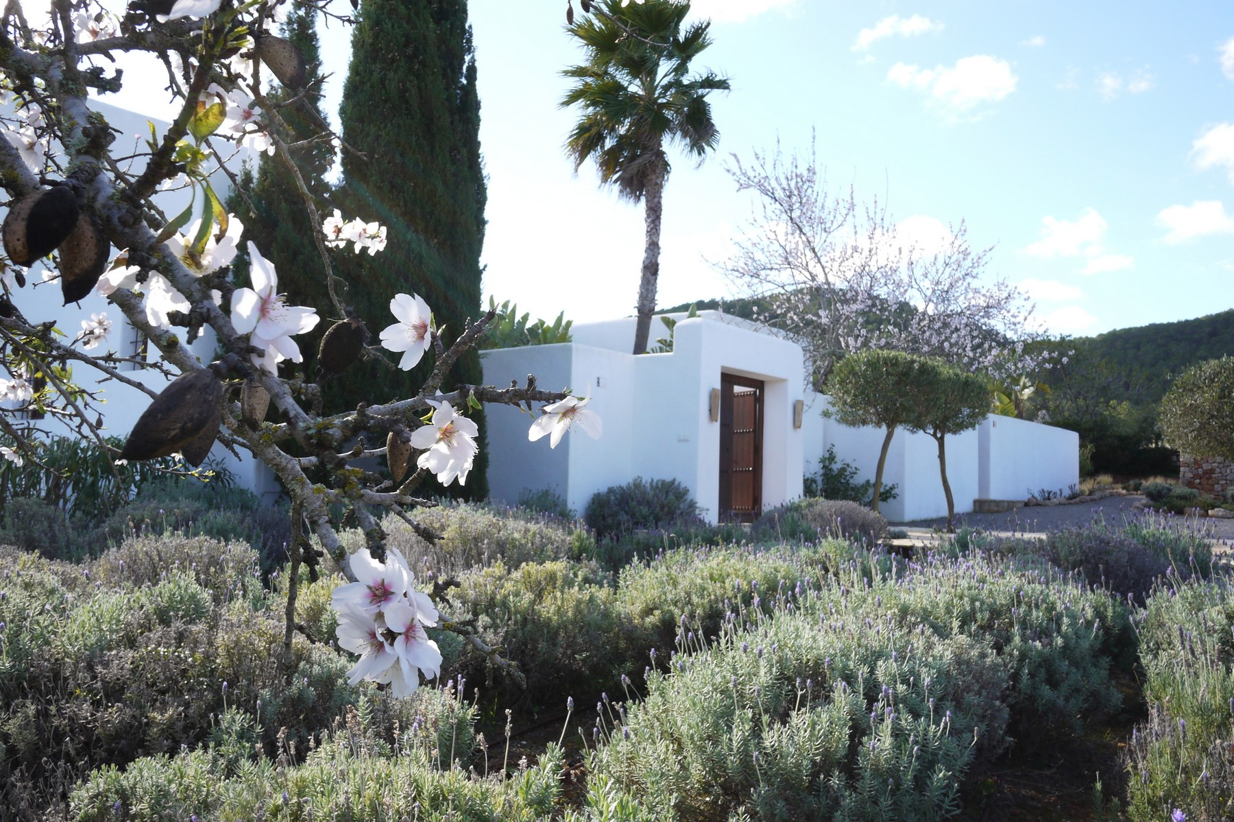 Single Family Home for Sale at Country villa in beautiful rustic setting Santa Gertrudis Santa Eulalia, Ibiza 07814 Spain