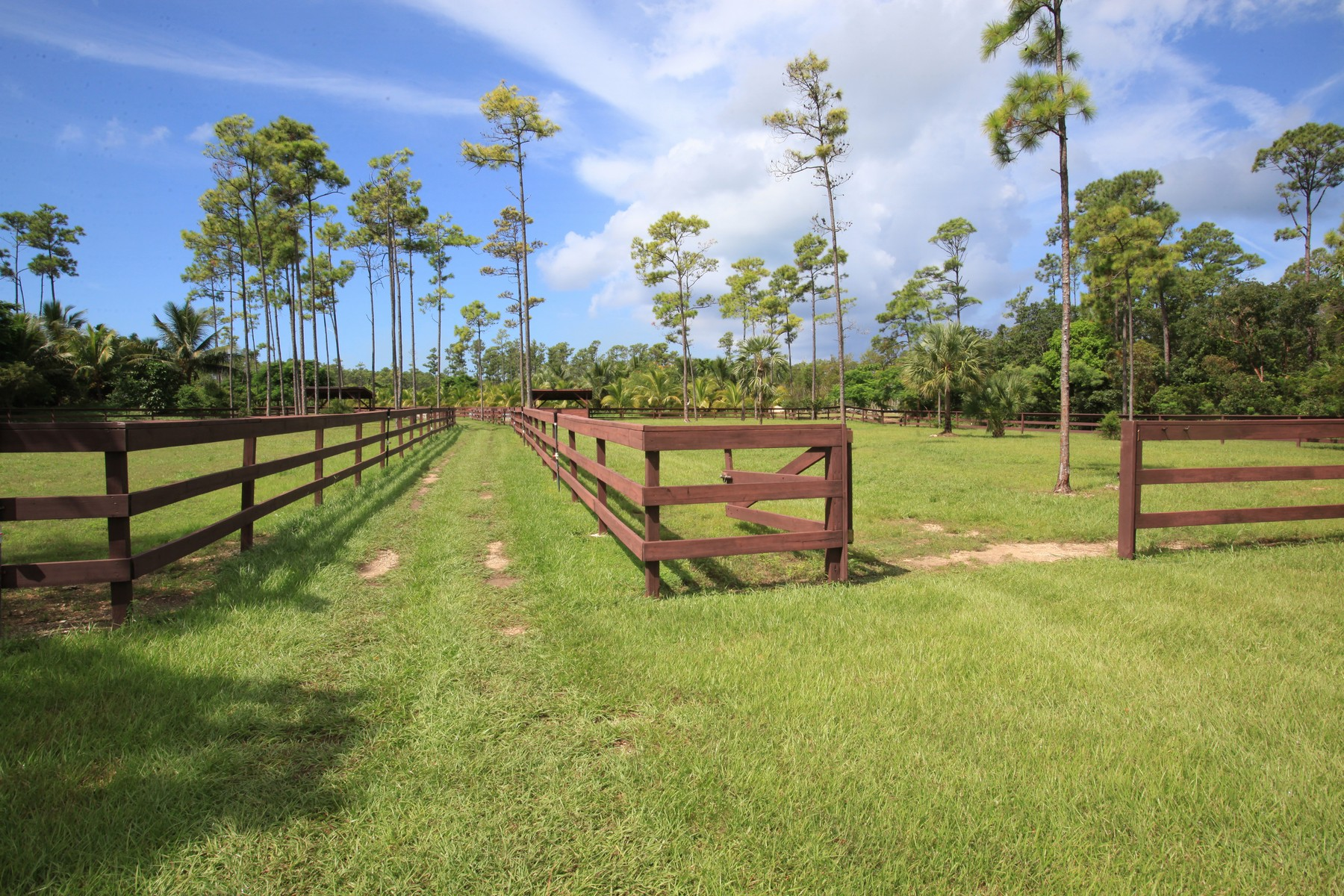 Farm / Ranch / Plantation for Sale at Moon Stone Stables Lyford Cay, Nassau And Paradise Island Bahamas