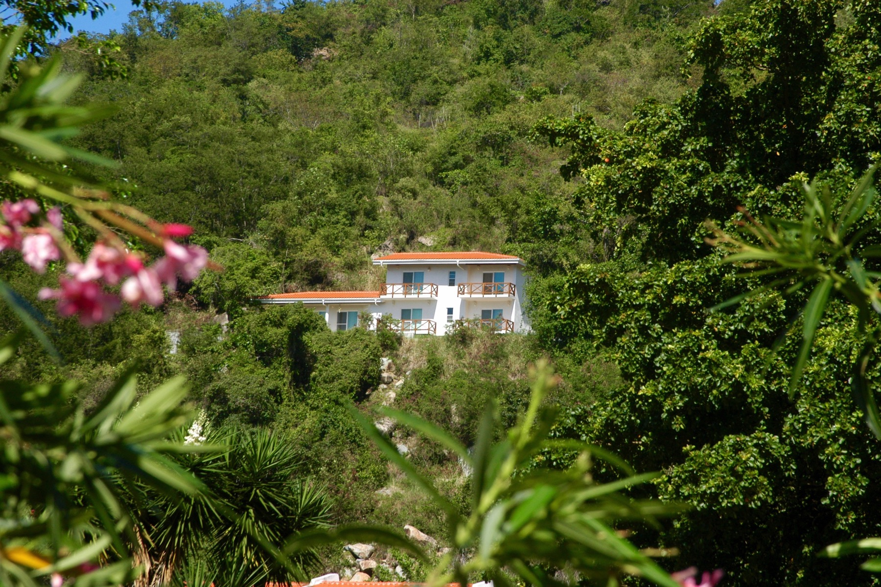 Additional photo for property listing at Villa Frangipani Lambert Beach, Tortola Iles Vierges Britanniques