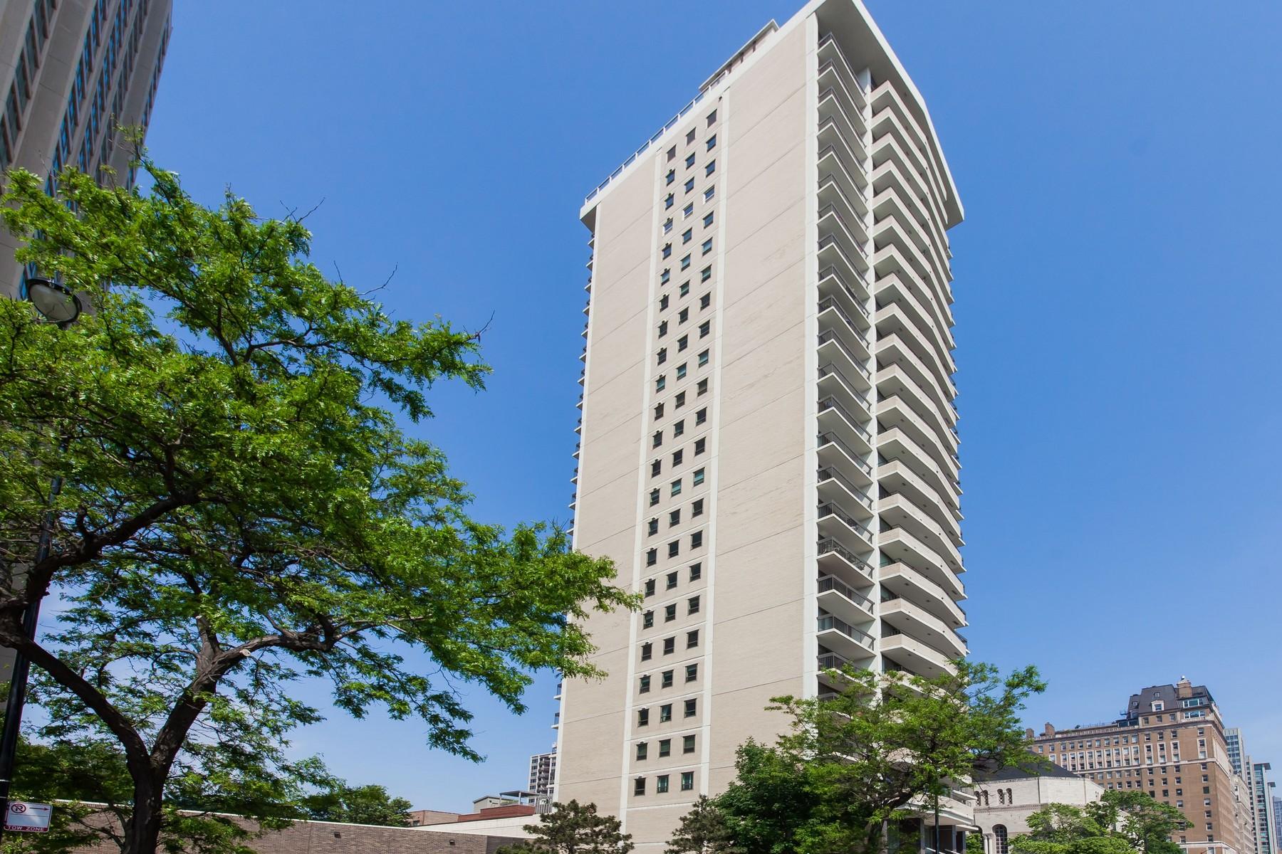 Appartement en copropriété pour l Vente à Luxurious Lake Shore Condo 3470 N Lake Shore Drive Unit 21B Lakeview, Chicago, Illinois, 60657 États-Unis