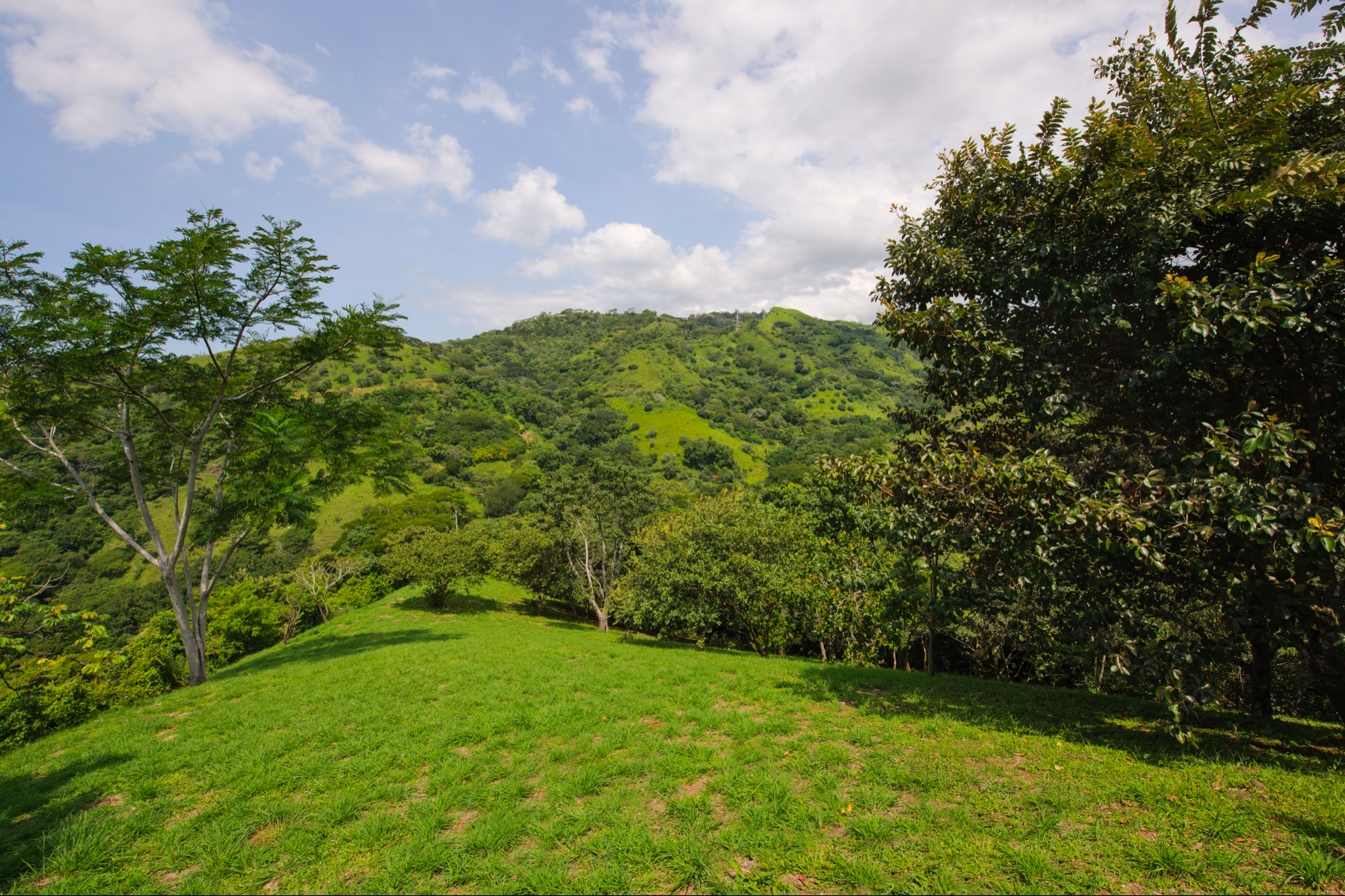 Farm / Ranch / Plantation for Sale at Finca Hermosa Atenas, Alajuela 20501 Costa Rica