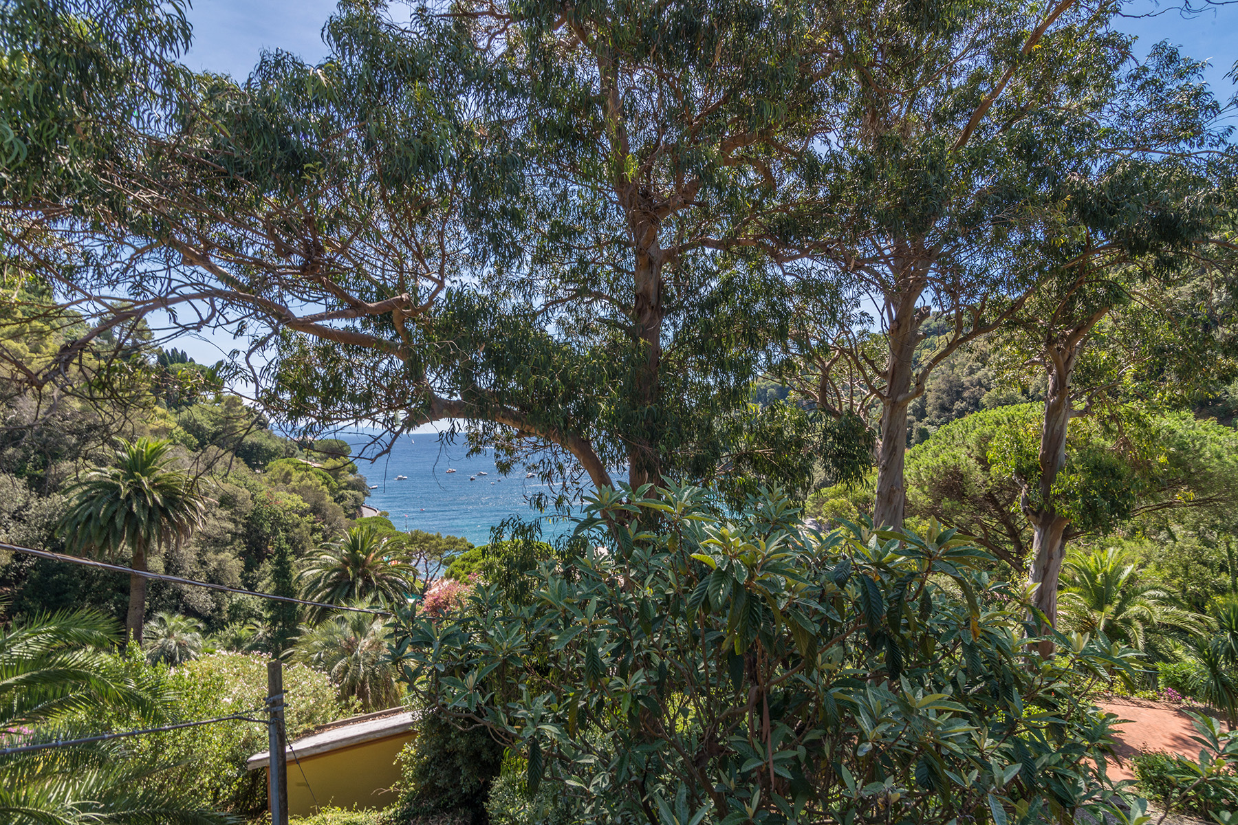 Additional photo for property listing at Magnifica villa a Paraggi nel parco di Portofino via di Paraggi Portofino, Genoa 16038 Italy
