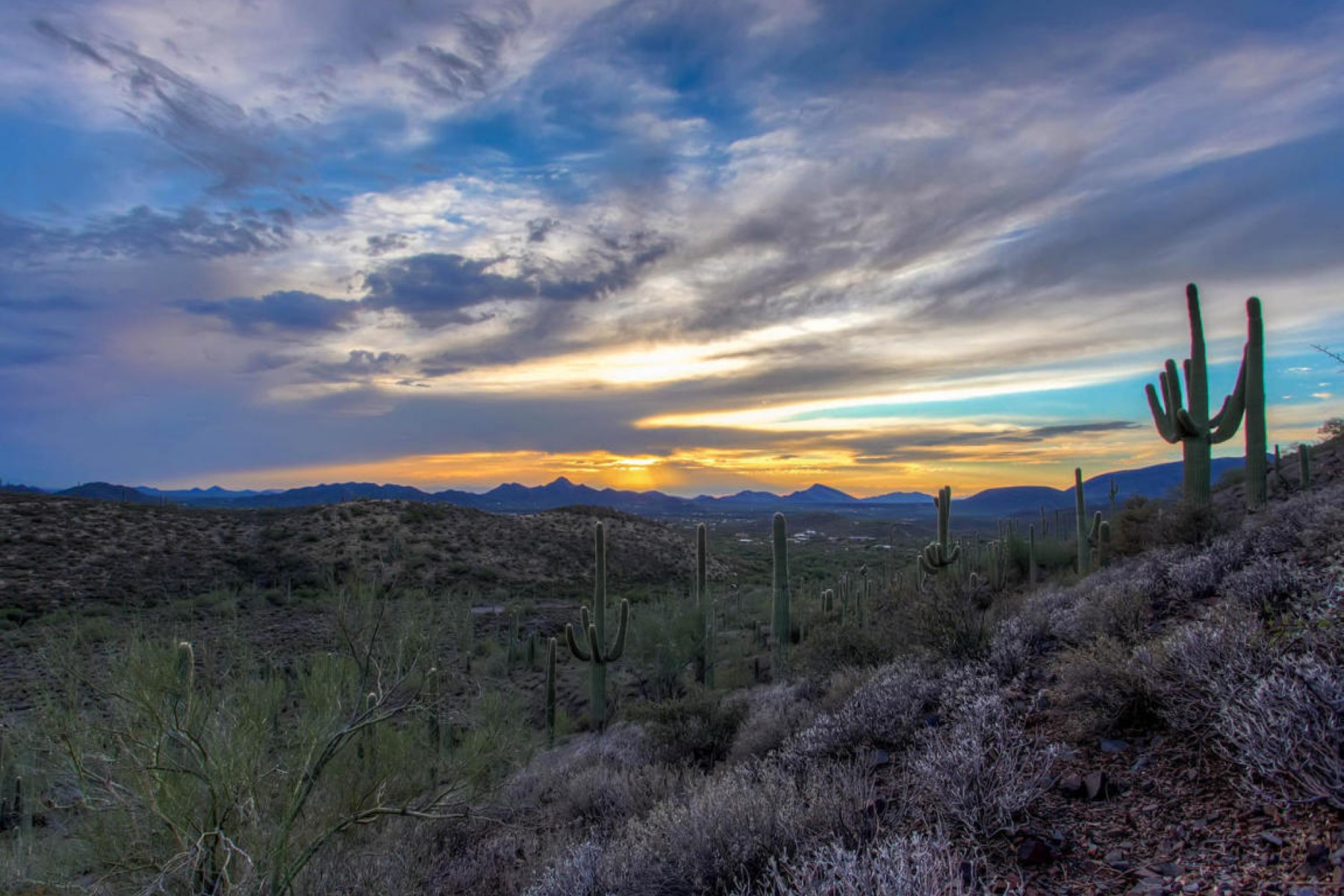 Terrain pour l Vente à Panoramic mountain and city views in all directions 42000 N Fleming Springs Rd Cave Creek, Arizona, 85331 États-Unis
