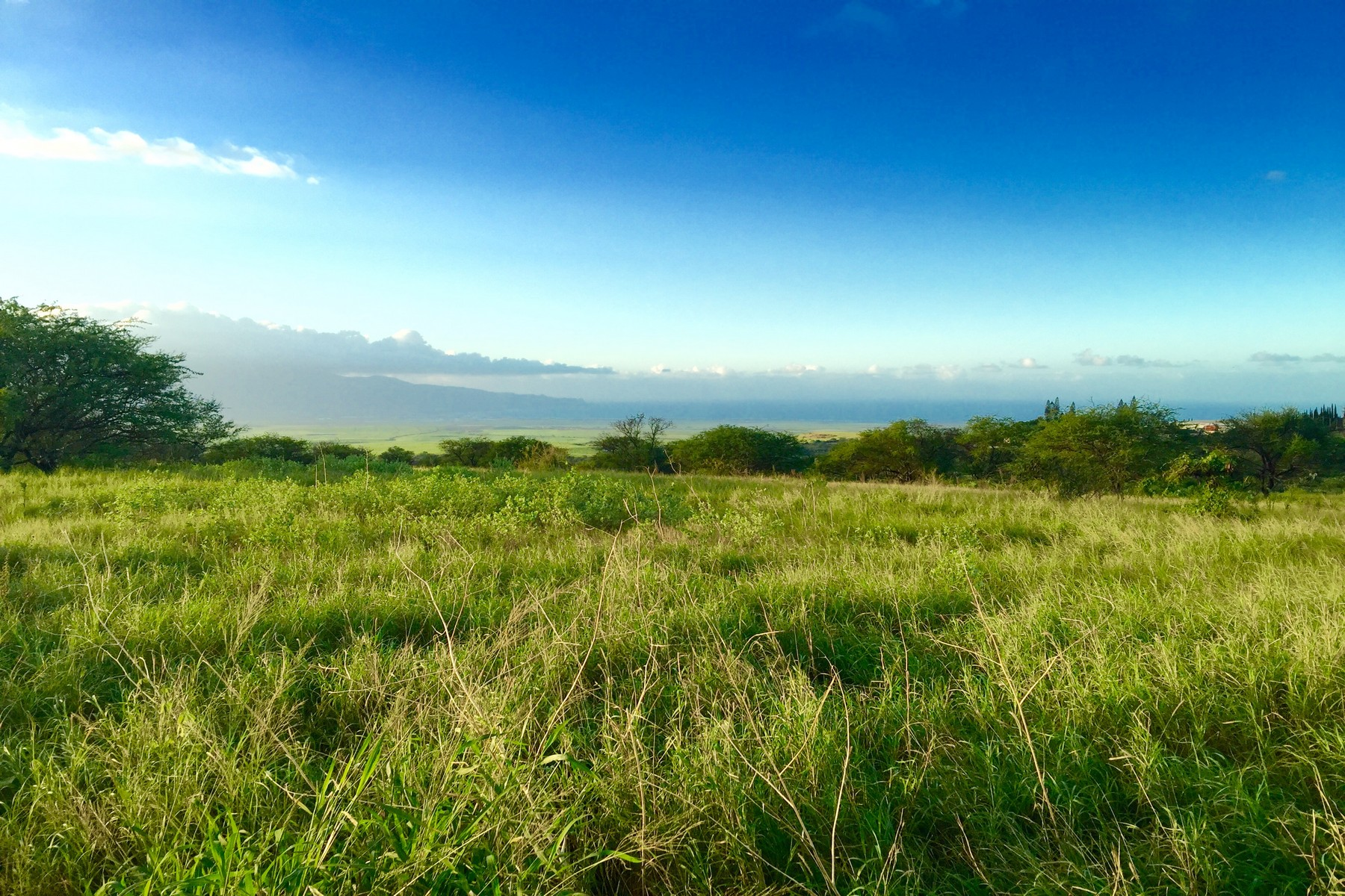 Land for Sale at Lot 1A Hoomaikai Hoomaikai Pl Lot 1A Kula, Hawaii 96790 United States