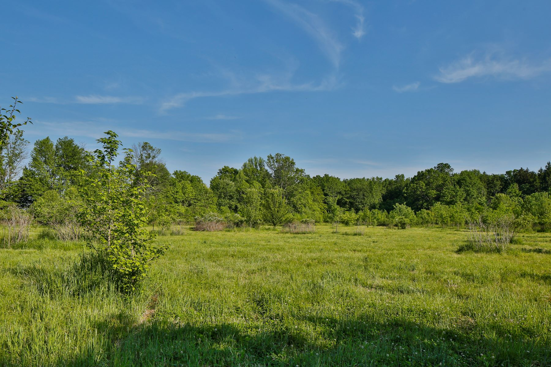 Additional photo for property listing at Charming Oakland Farm and 60+/- Picturesque Acres - Springfield Township 144 Warner Avenue Columbus, Нью-Джерси 08022 Соединенные Штаты