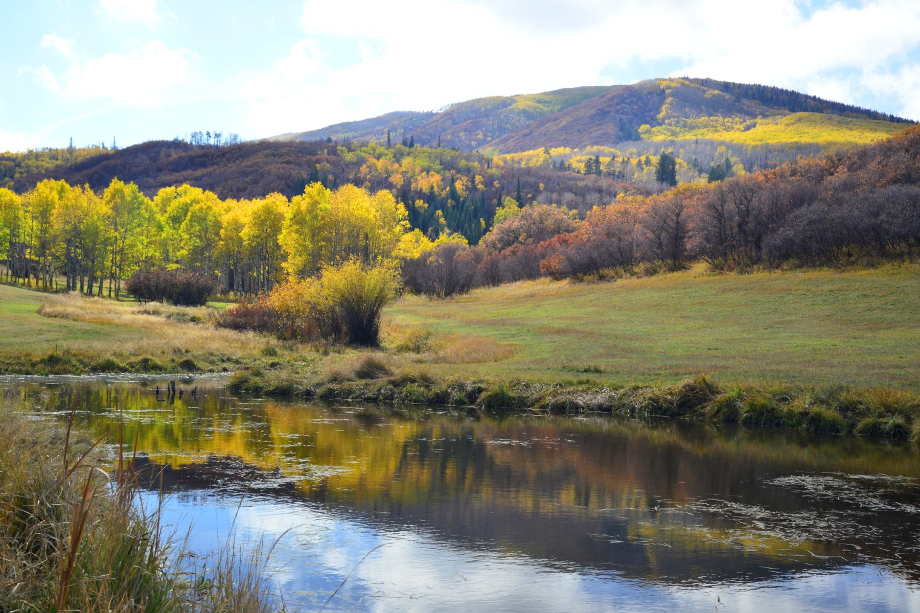 Additional photo for property listing at Lazy K Ranch 27795 County Road 14 Steamboat Springs, Colorado 80487 États-Unis