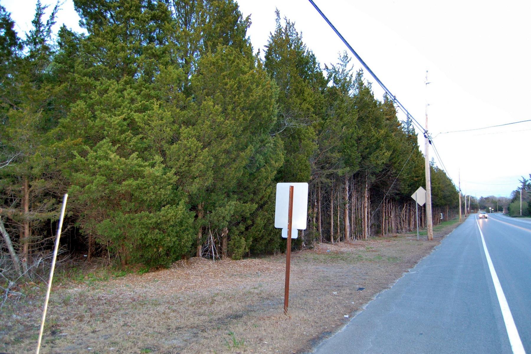 土地 为 销售 在 Petersburg Lot 629 Route 50 彼得堡, 新泽西州, 08270 美国
