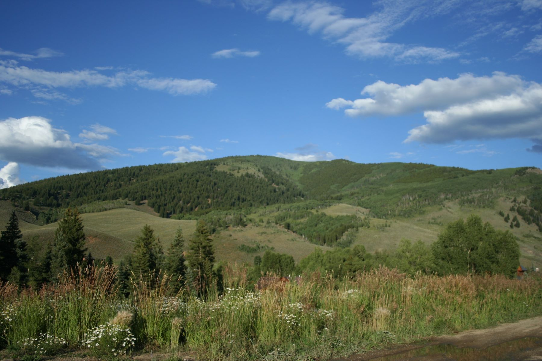 Additional photo for property listing at Pogna Ranch 0 Unnumbered Upper Allen Road Crested Butte, Colorado 81224 United States