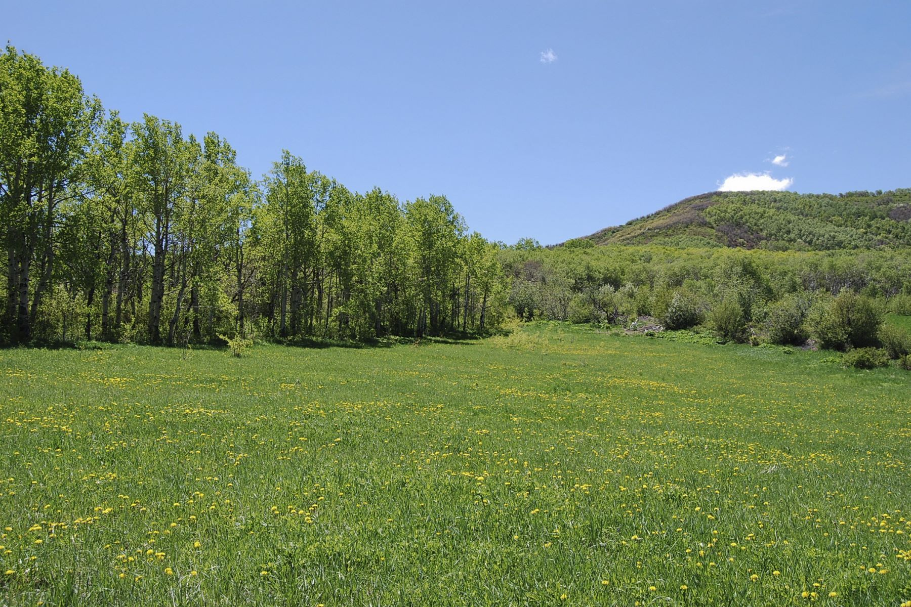 Additional photo for property listing at Allegheny Gypsum 24005 Rossi Lane Oak Creek, Colorado 80467 United States