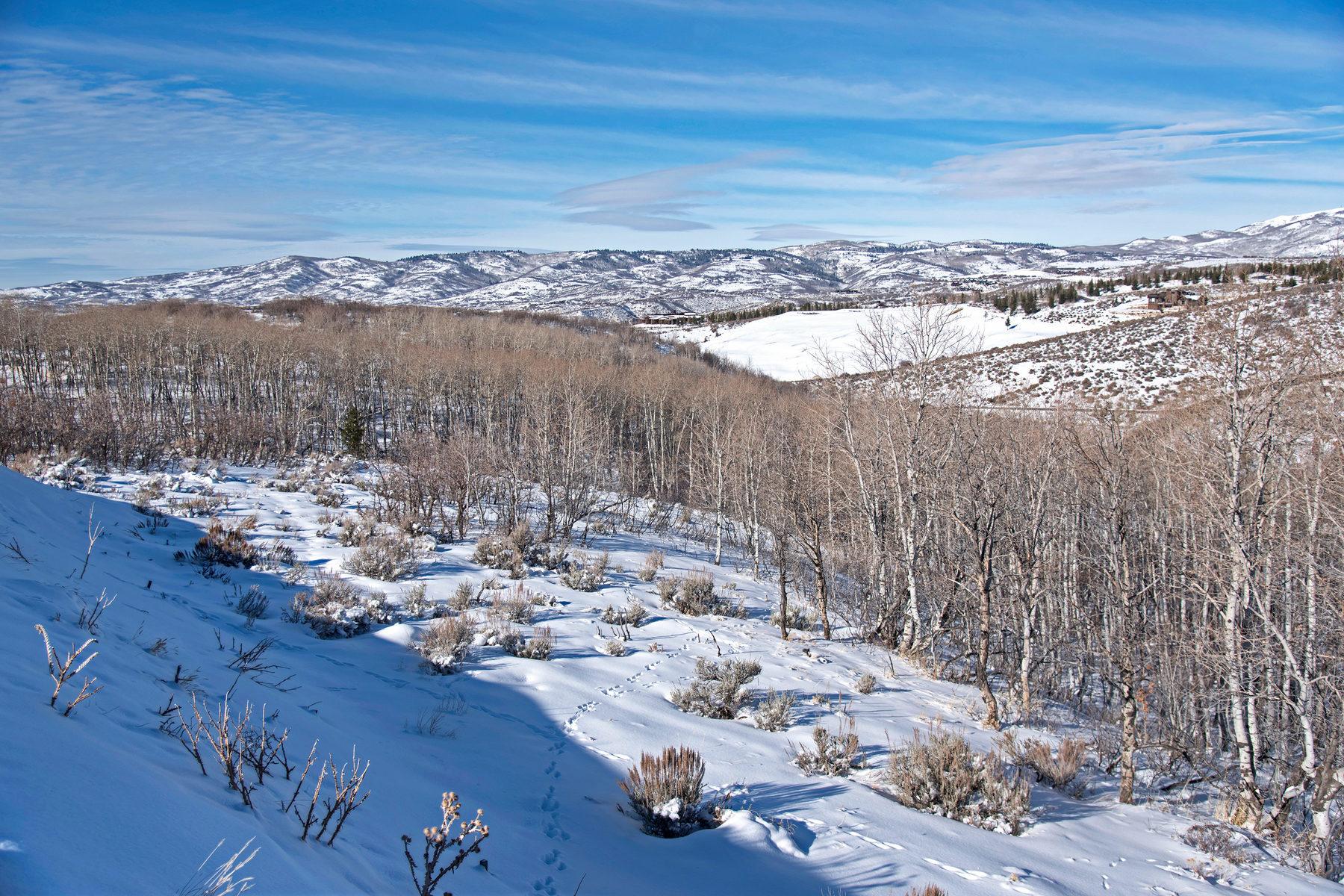 Đất đai vì Bán tại Beautiful Promontory Home Site Among The Aspens 7645 N Promontory Ranch Rd Lot 11 Park City, Utah, 84098 Hoa Kỳ