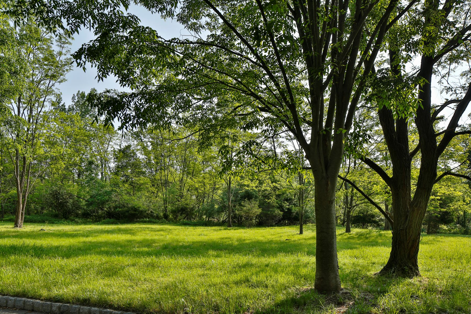 Additional photo for property listing at Ready to Build Lot in Lawrence Township 16 Buckingham Drive, Princeton, New Jersey 08540 United States
