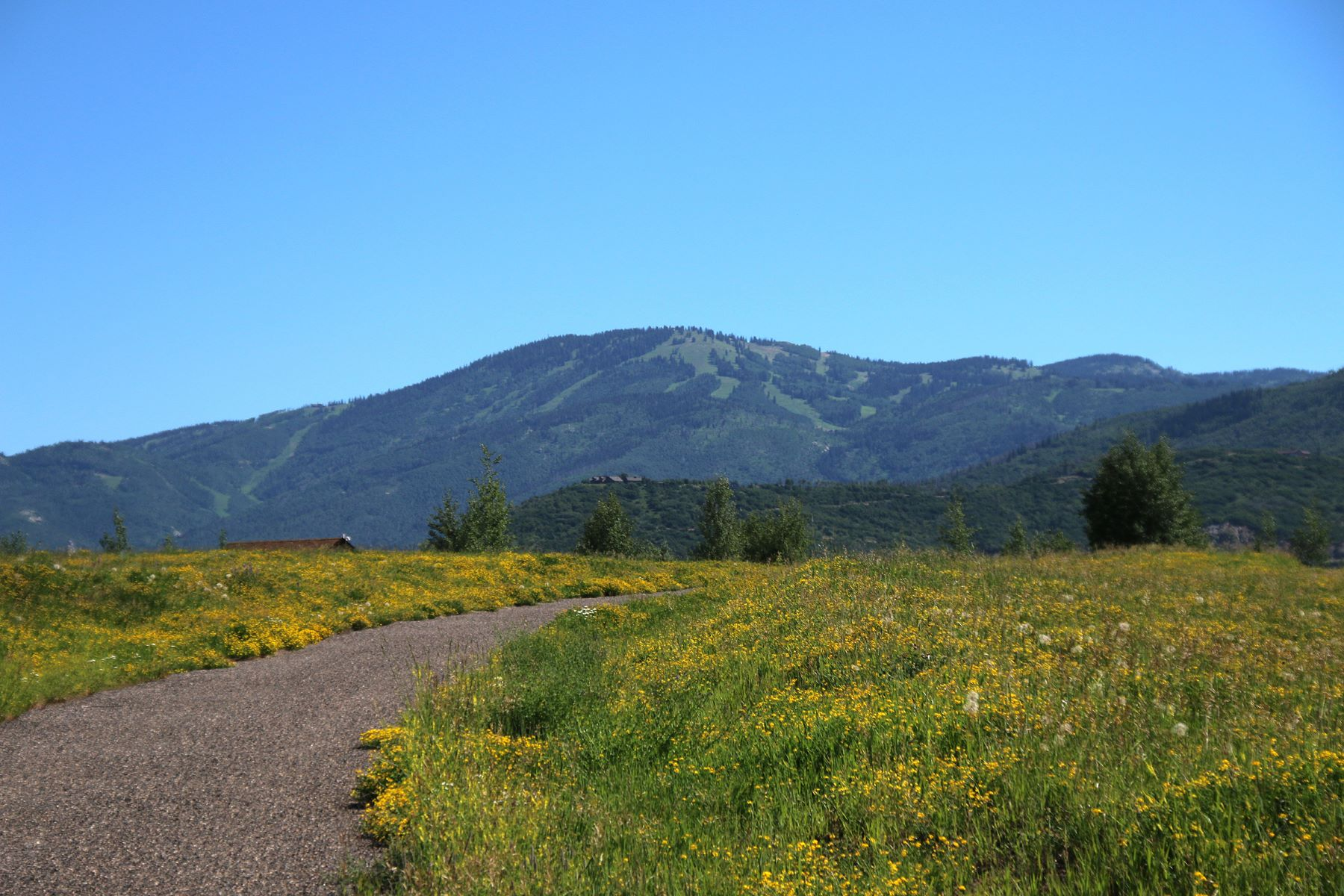 Additional photo for property listing at 50+ Acres at Lake Catamount 31725 County Road 14C Steamboat Springs, Colorado 80487 United States