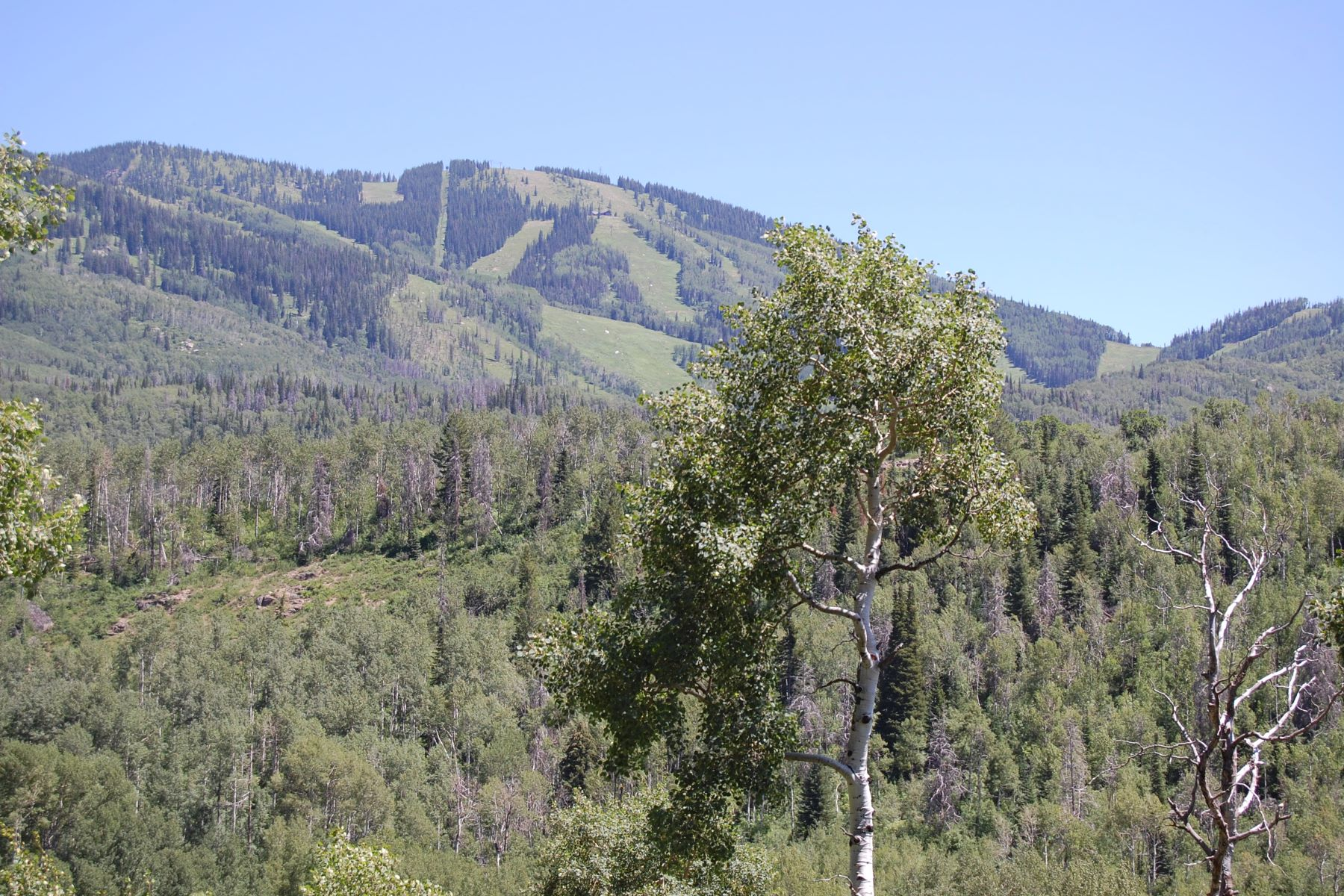 Additional photo for property listing at Fish Creek Falls Lot 2700 County Road 32 Steamboat Springs, Colorado 80487 États-Unis