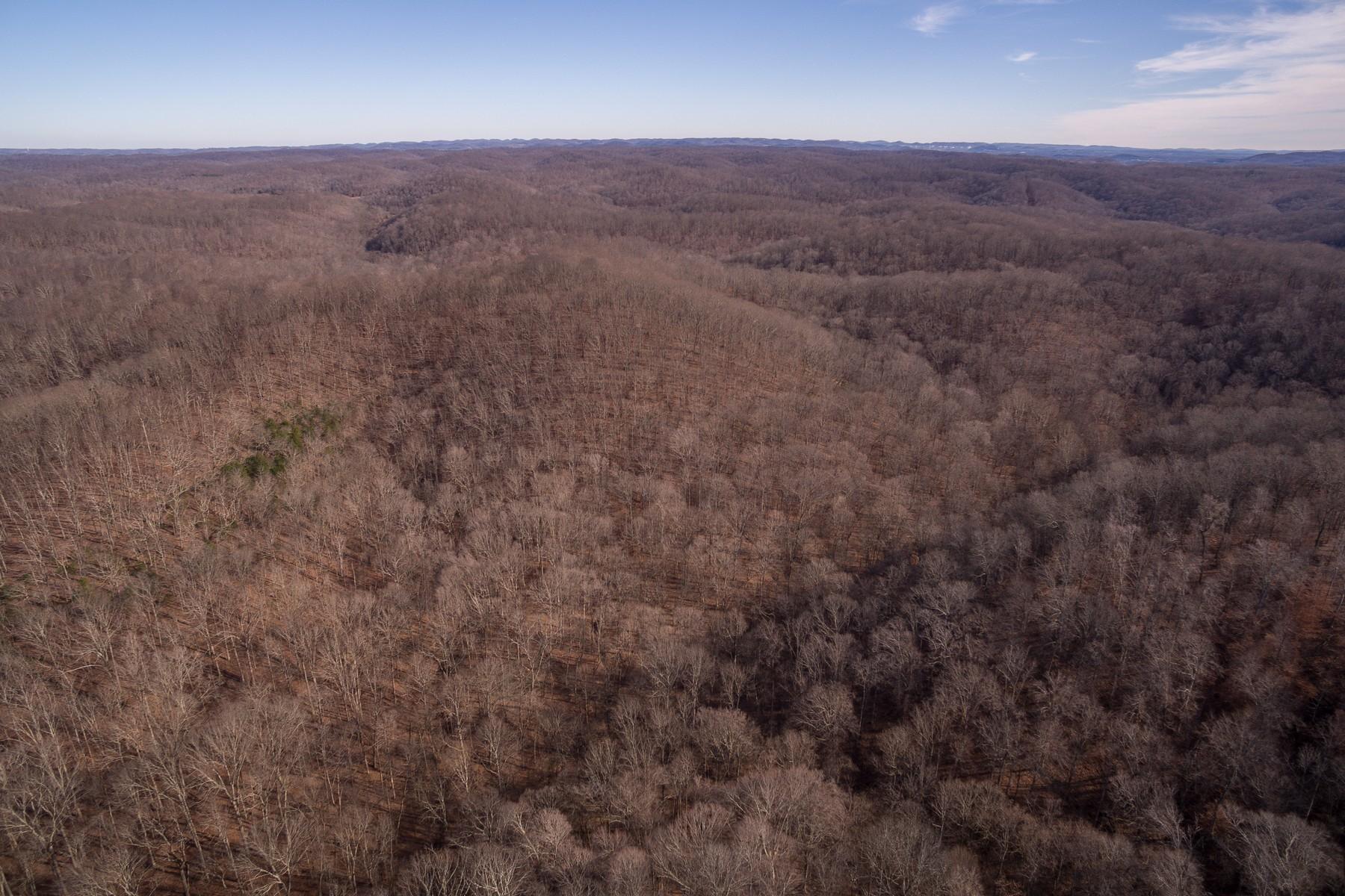 Terreno por un Venta en 100 Acres in Franklin 5290 Bedford Creek Road Franklin, Tennessee, 37064 Estados Unidos