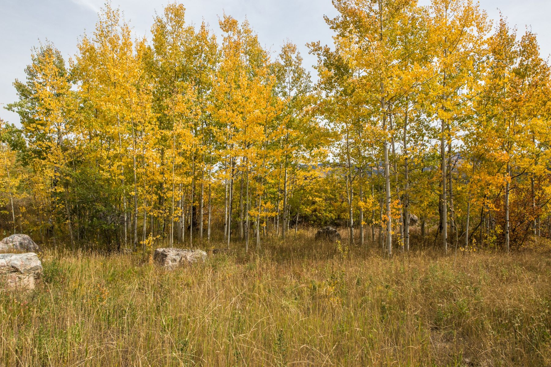 Land for Sale at Sanctuary Lot 557 Steamboat Boulevard Steamboat Springs, Colorado 80487 United States