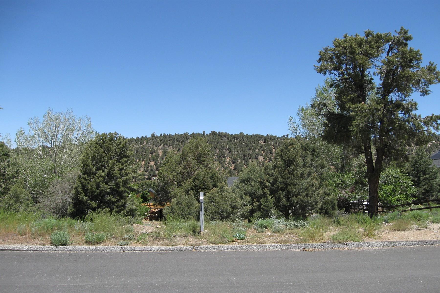 土地,用地 为 销售 在 47170 Skyview, Big Bear City Ca. 92314 大熊湖城, 加利福尼亚州 92314 美国