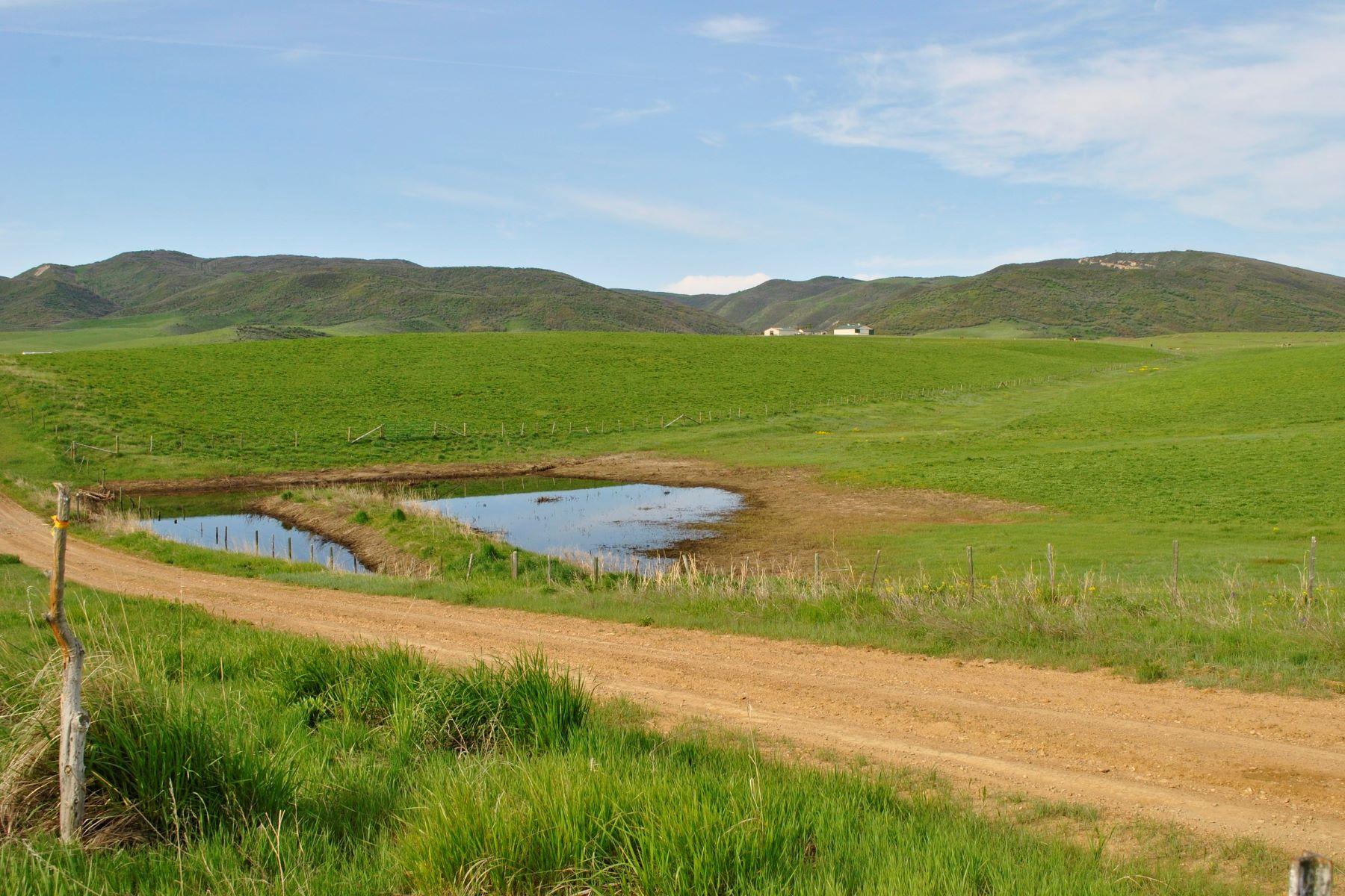 Fattoria / ranch / campagna per Vendita alle ore T&T Ranch TBD County Road 51 Hayden, Colorado, 81639 Stati Uniti