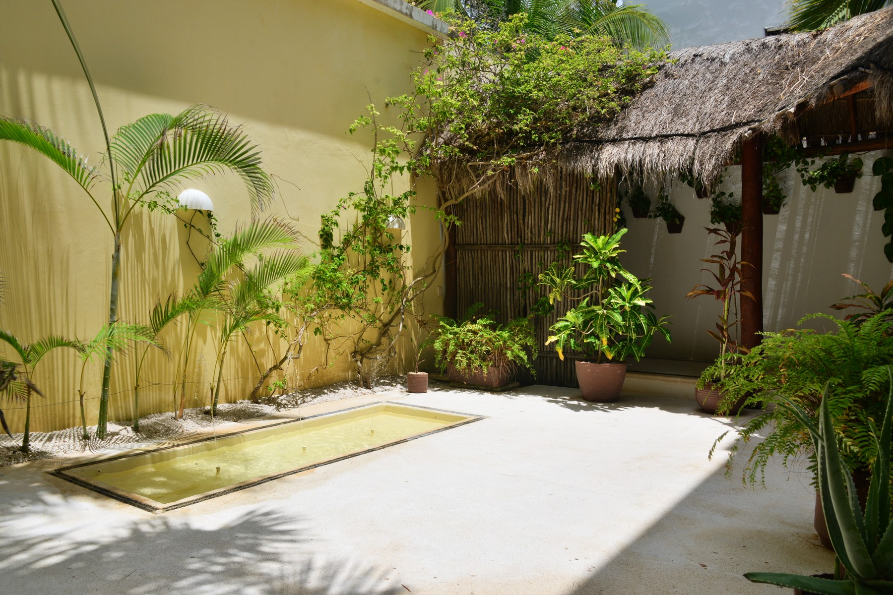 Additional photo for property listing at DEPARTAMENTO # 101 PARAISO FRENTE AL MAR Seafront Paradise – Unit #101 Predio Maria Irene, Supermzna 12, Mzna 21 13 Puerto Morelos, Quintana Roo 77930 México