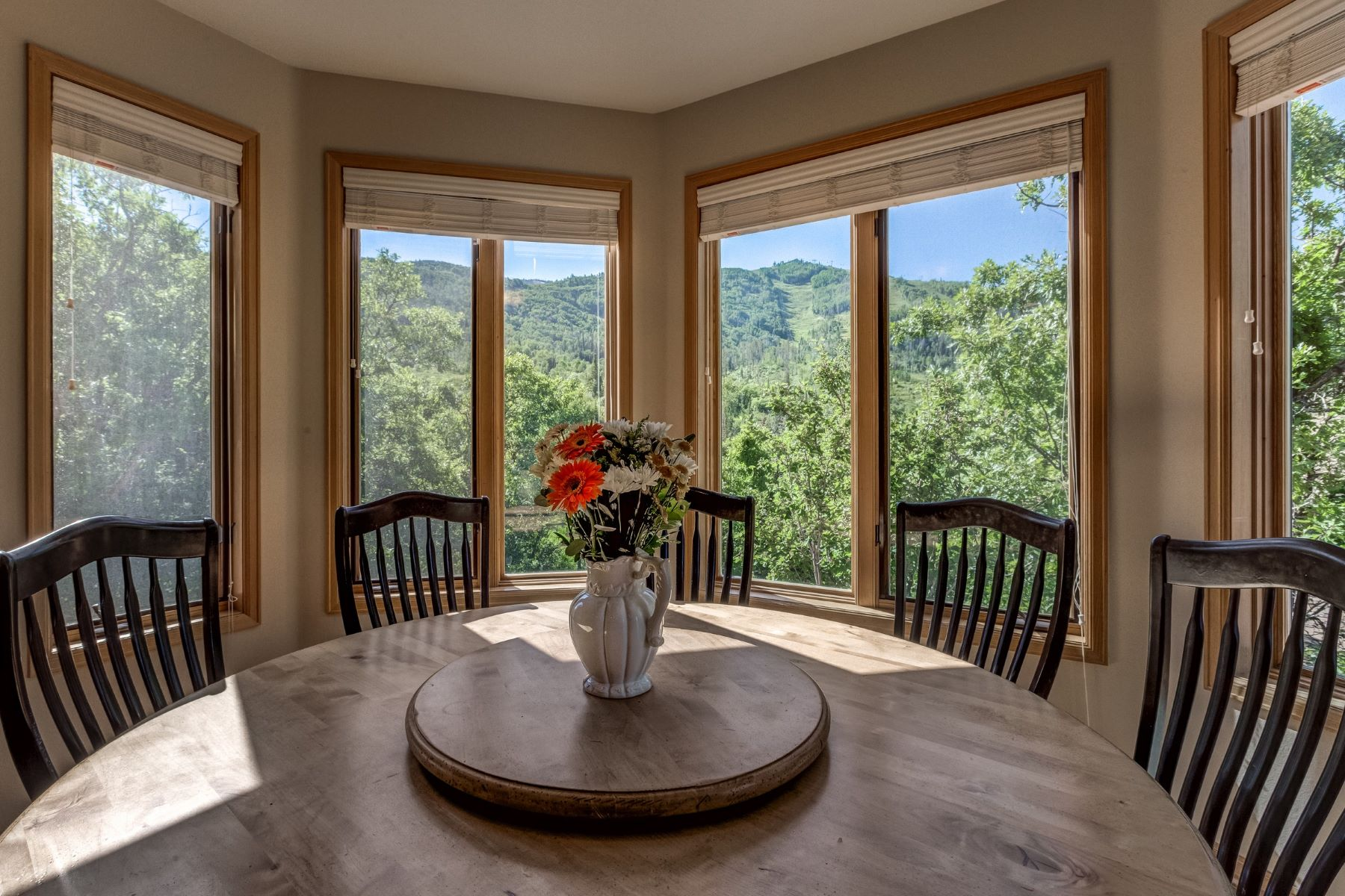 Additional photo for property listing at Edelweiss Chalet 3040 Temple Knoll Steamboat Springs, Colorado 80487 United States