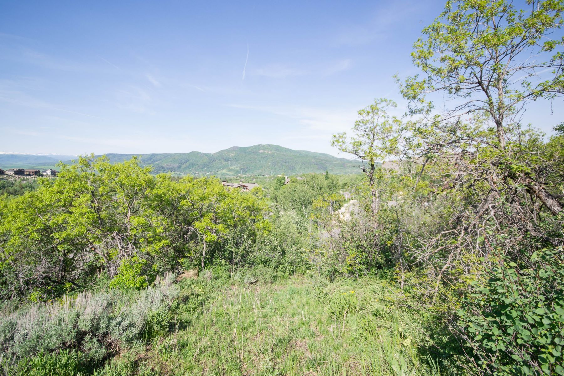 Additional photo for property listing at Endless Steamboat Valley Views 662 Steamboat Blvd 斯廷博特斯普林斯, 科罗拉多州 80487 美国