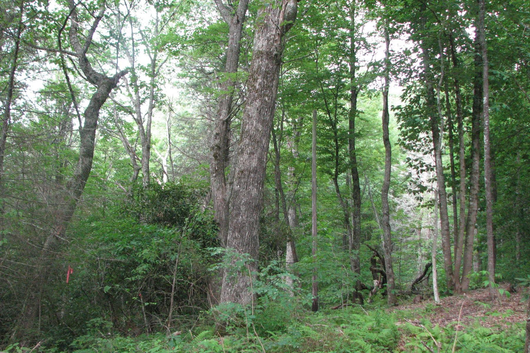 Land for Sale at Woodland Ridge Lot 14 Woodland Ridge Drive Highlands, North Carolina 28741 United States